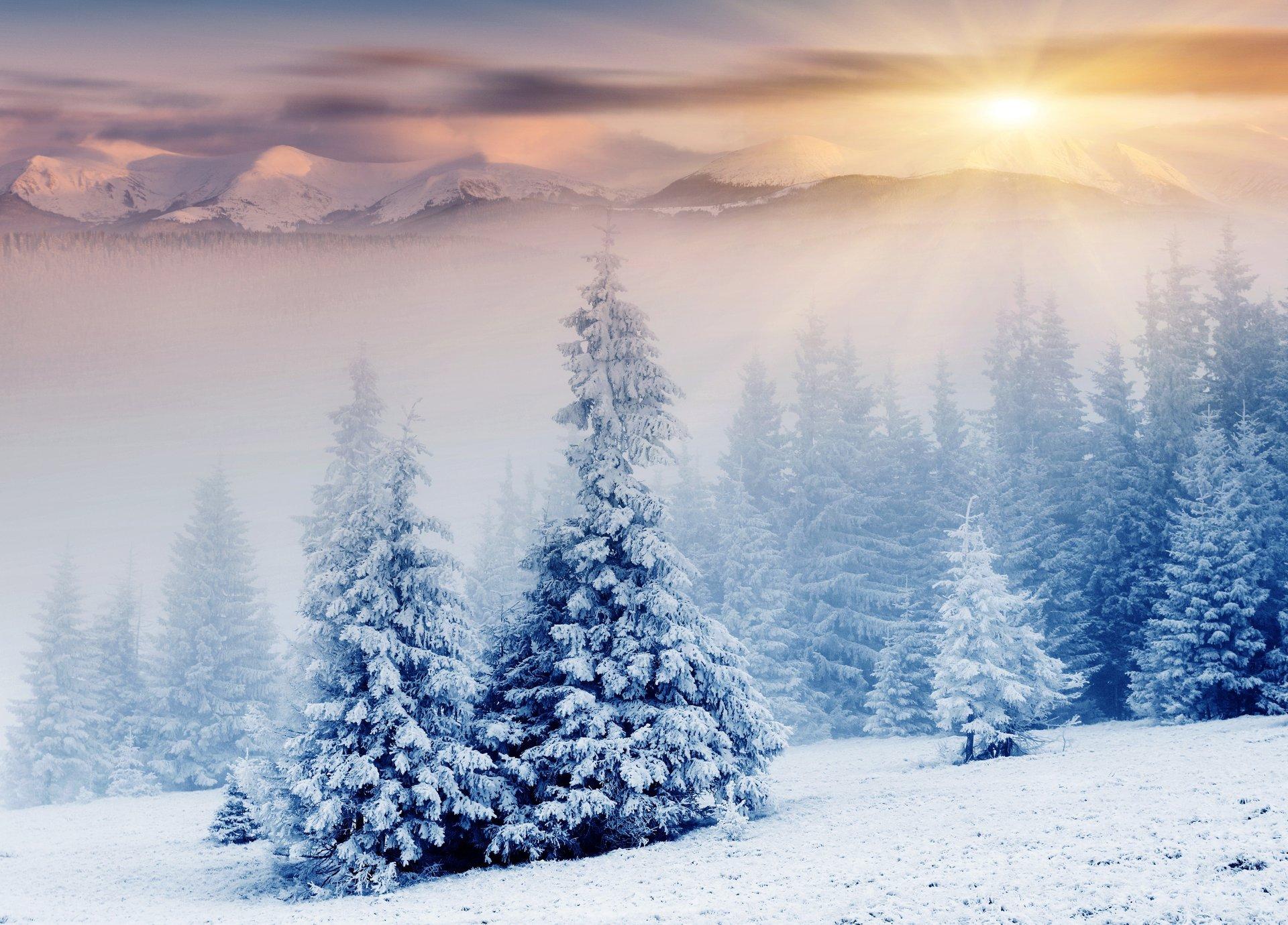 Зима новые картинки