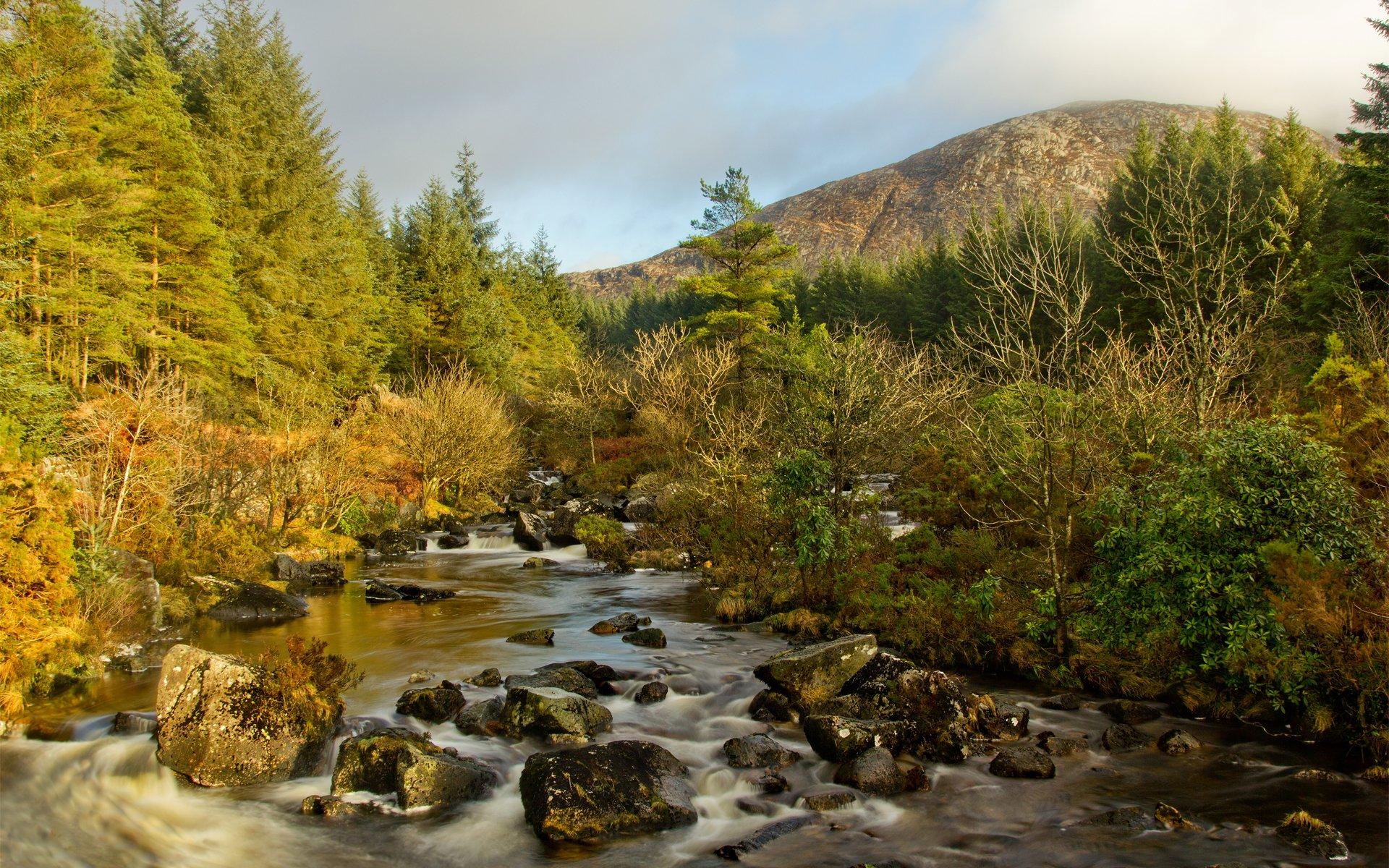 картинки гор леса и ручья