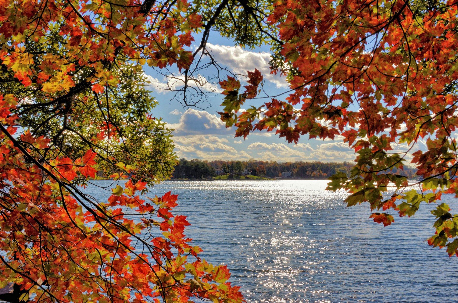 Красивые открытки с осенними пейзажами