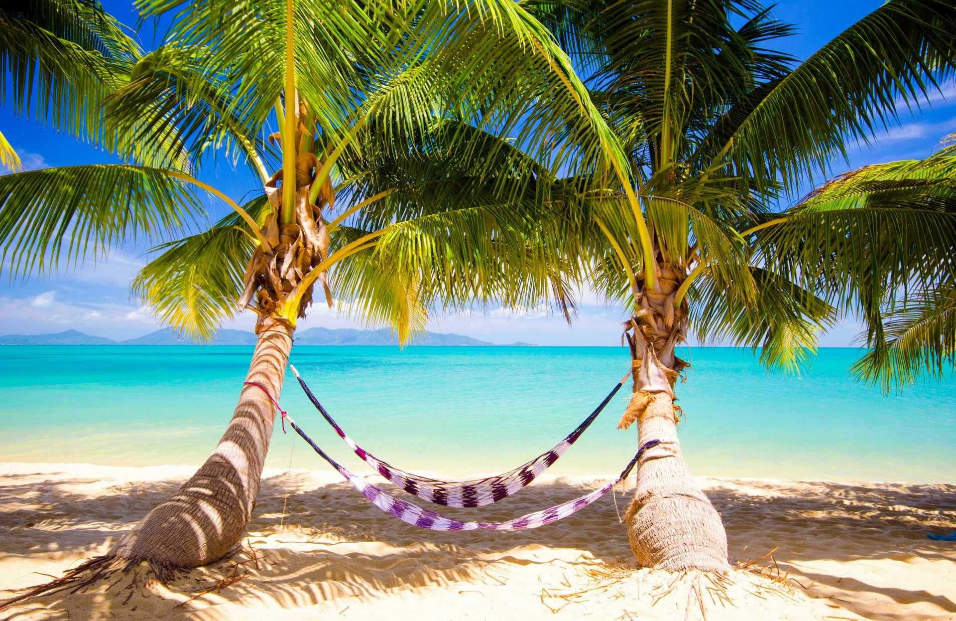 берег пальма море солнце пляж  № 3779858 загрузить