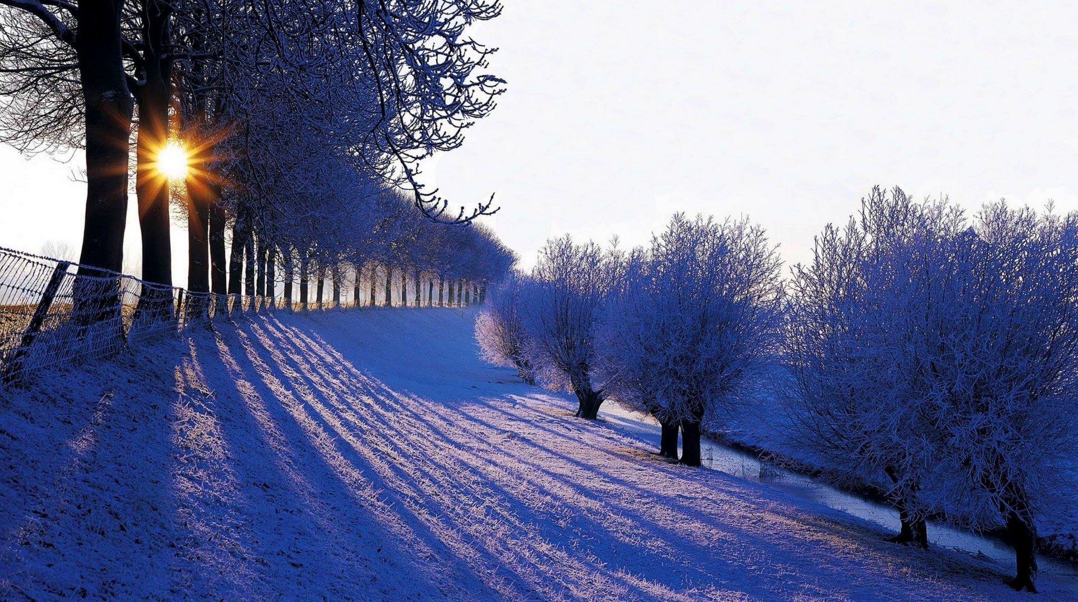Картинки для рабочего стола зима, футболки картинками