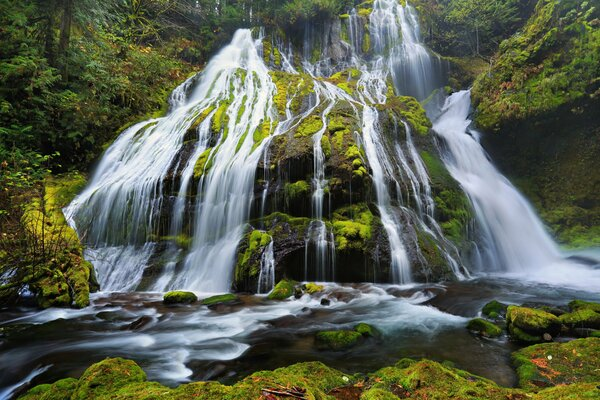 Panther Creek Falls Columbia River Gorge Oregon Орегон камни мох