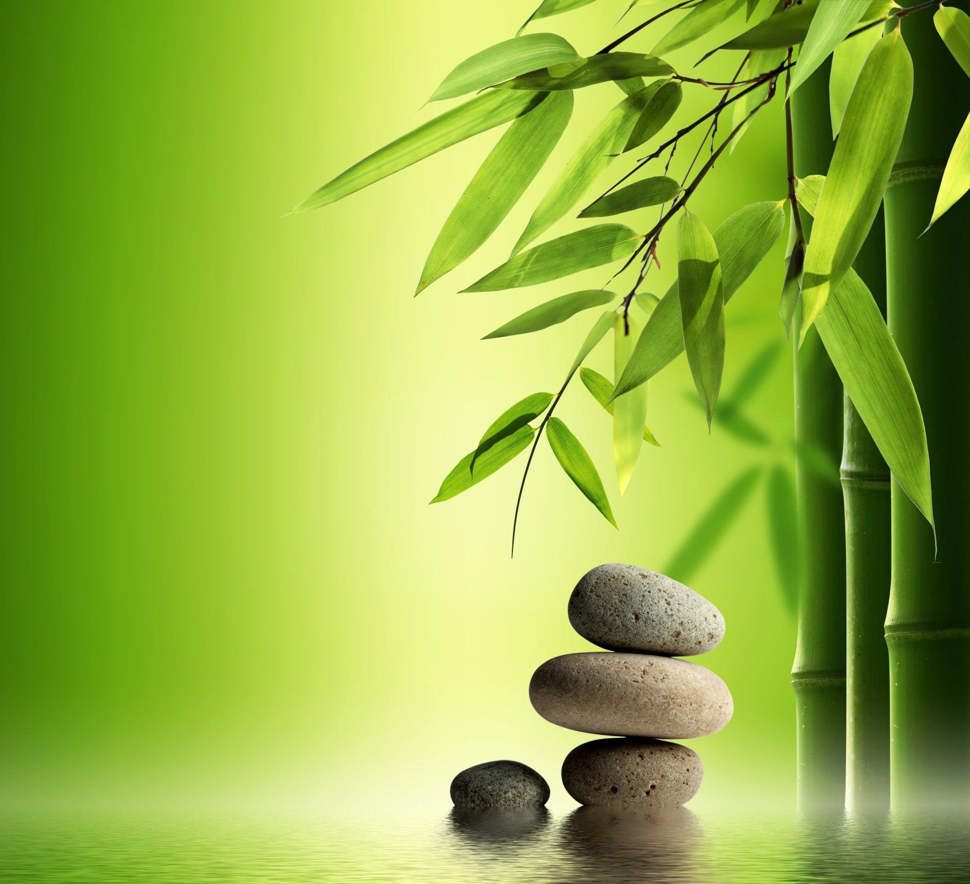 картинки природа пруд камни бамбук олень традиционно считается