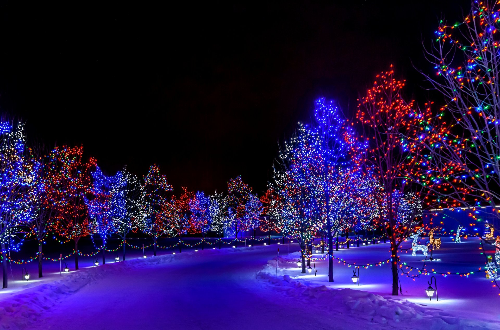 новый год домик огоньки поезд снег загрузить
