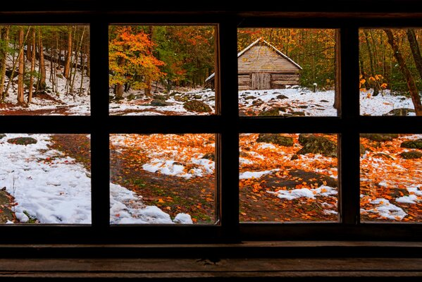 nature forest window winter snow park trees leaves colorful road path autumn fall colors walk grass house листья осень природа деревья дорога лес парк трава дом окно зима снег