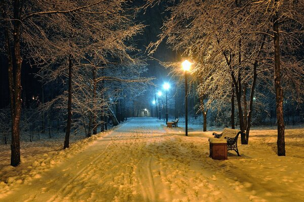 romantic evening benches bench seat winter snowy park road park nature beautiful scene landscape Lamppost lamp night midnight lights mood романтический вечер скамейки скамейка сиденья зимний снежный п