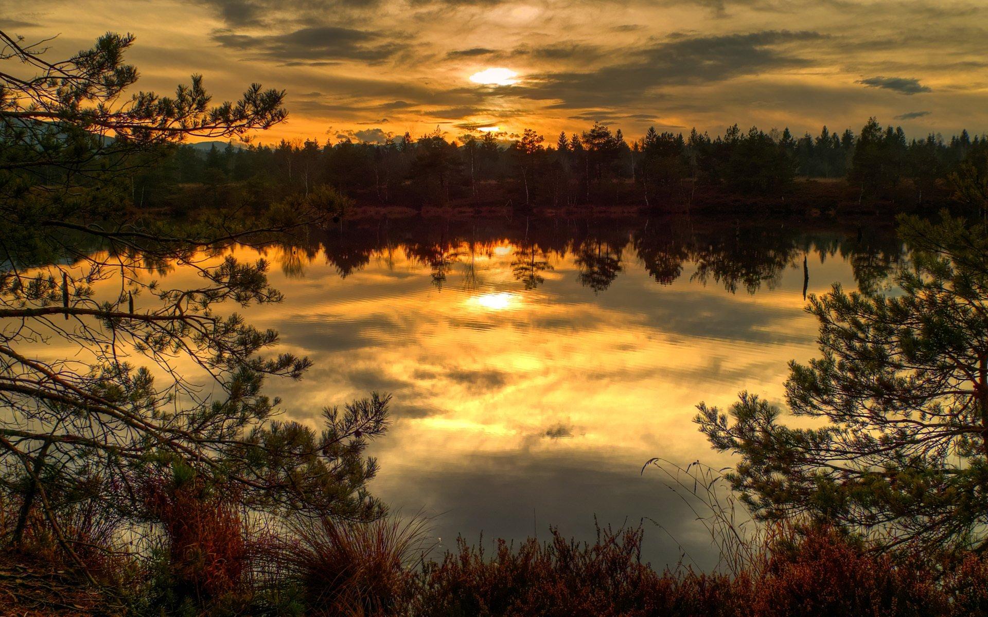 закат озеро осень трава  № 1020763 без смс
