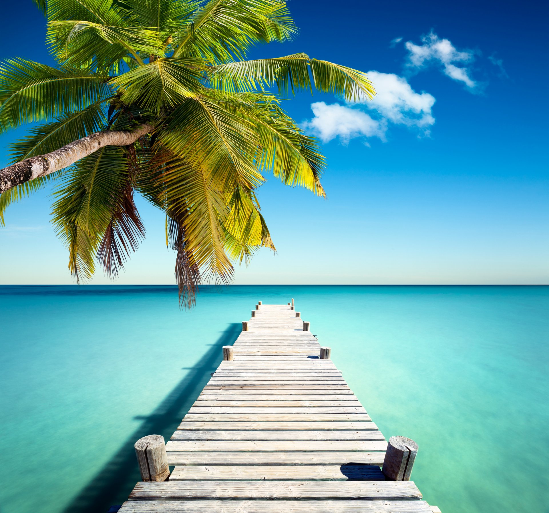 Обои Вода, отражения, Пальма, пирс, бассейн. Пейзажи foto 9
