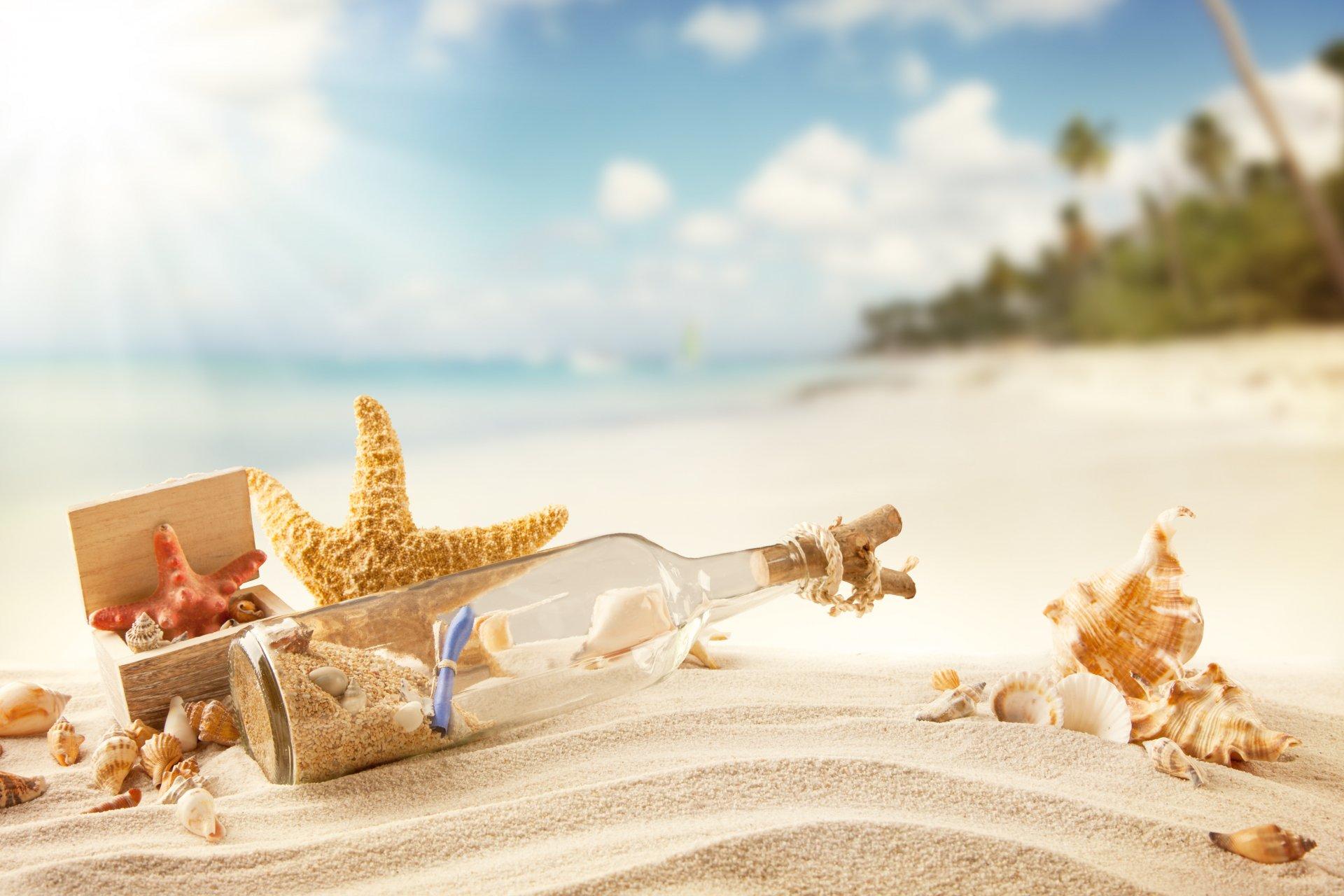 природа раковины песок пляж морская звезда nature shell sand the beach sea star загрузить