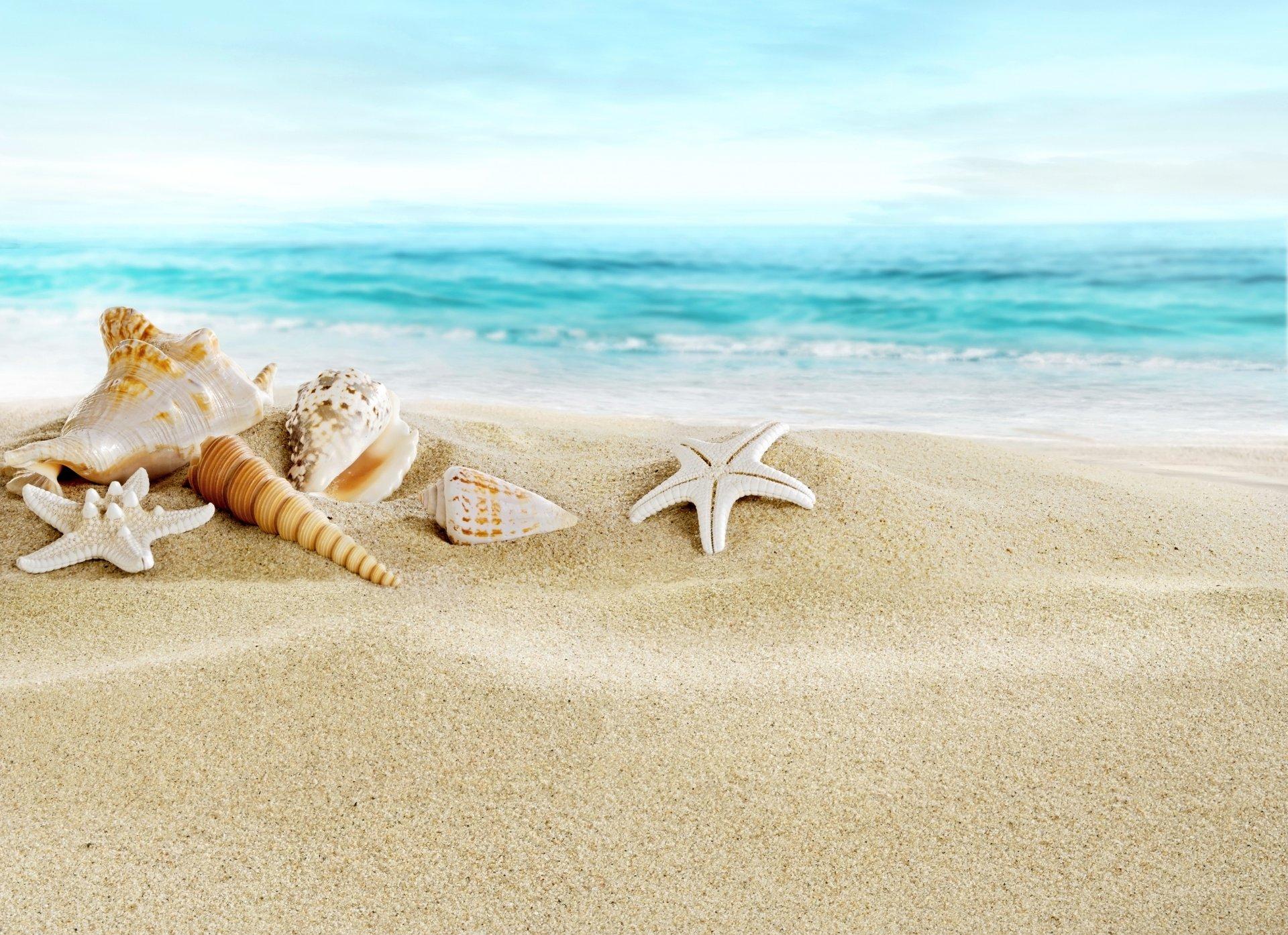 картинки с песком и ракушками отдают предпочтение активные