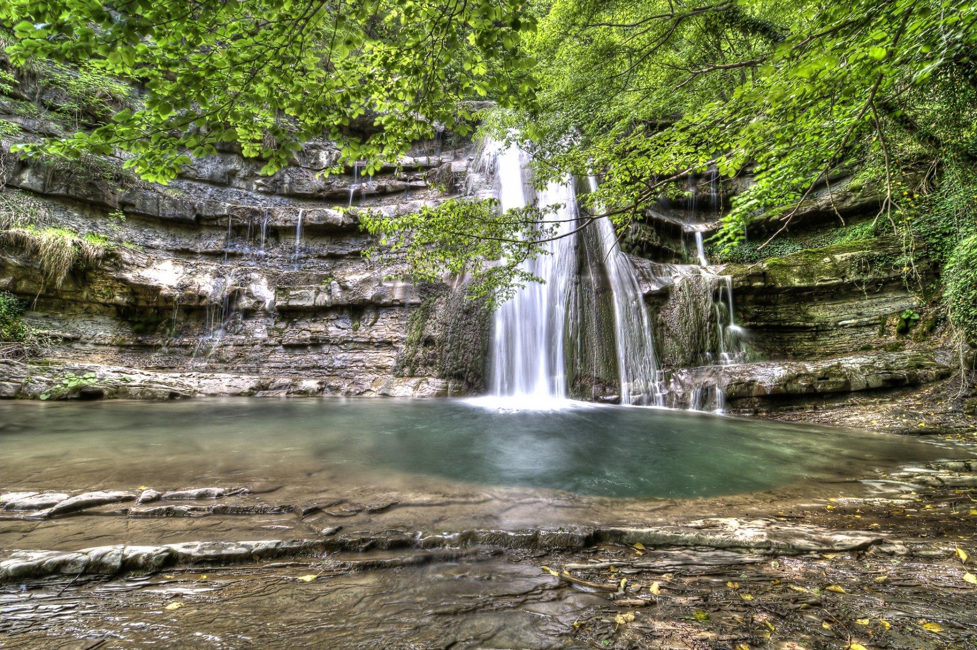 водопад среди деревьев  № 373583  скачать