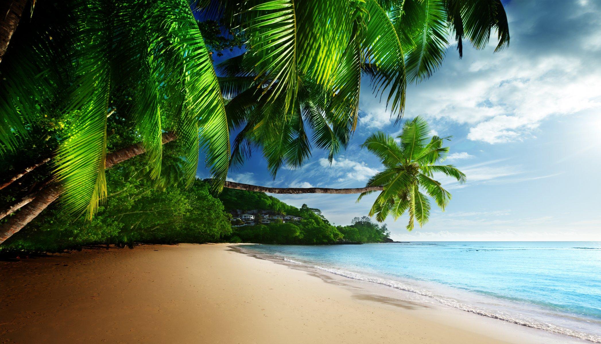 Фото девушек на тропическом побережье эротика, секс ролики лохматая пизда