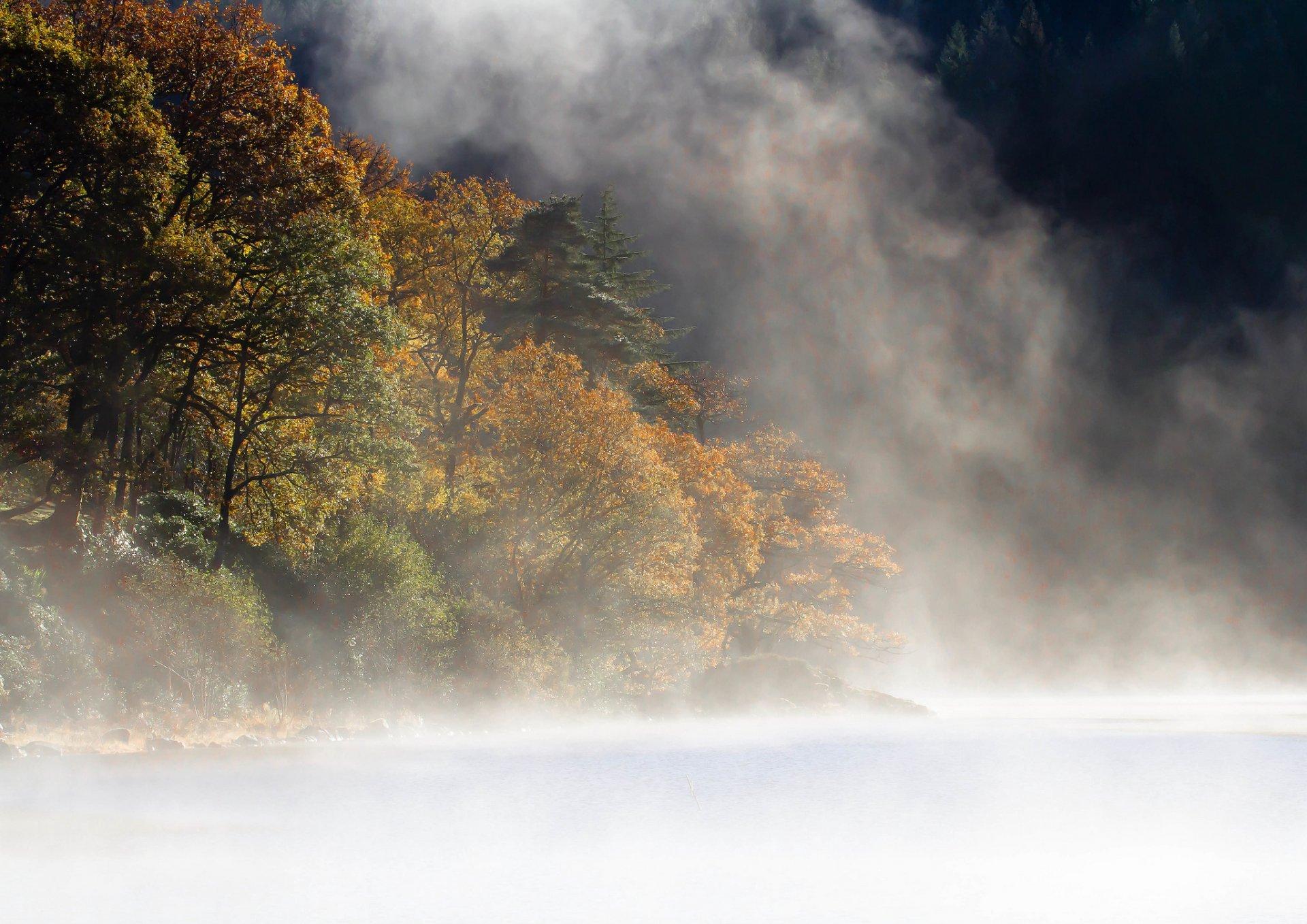 фото тумана в отличном качестве рассветом земли видно