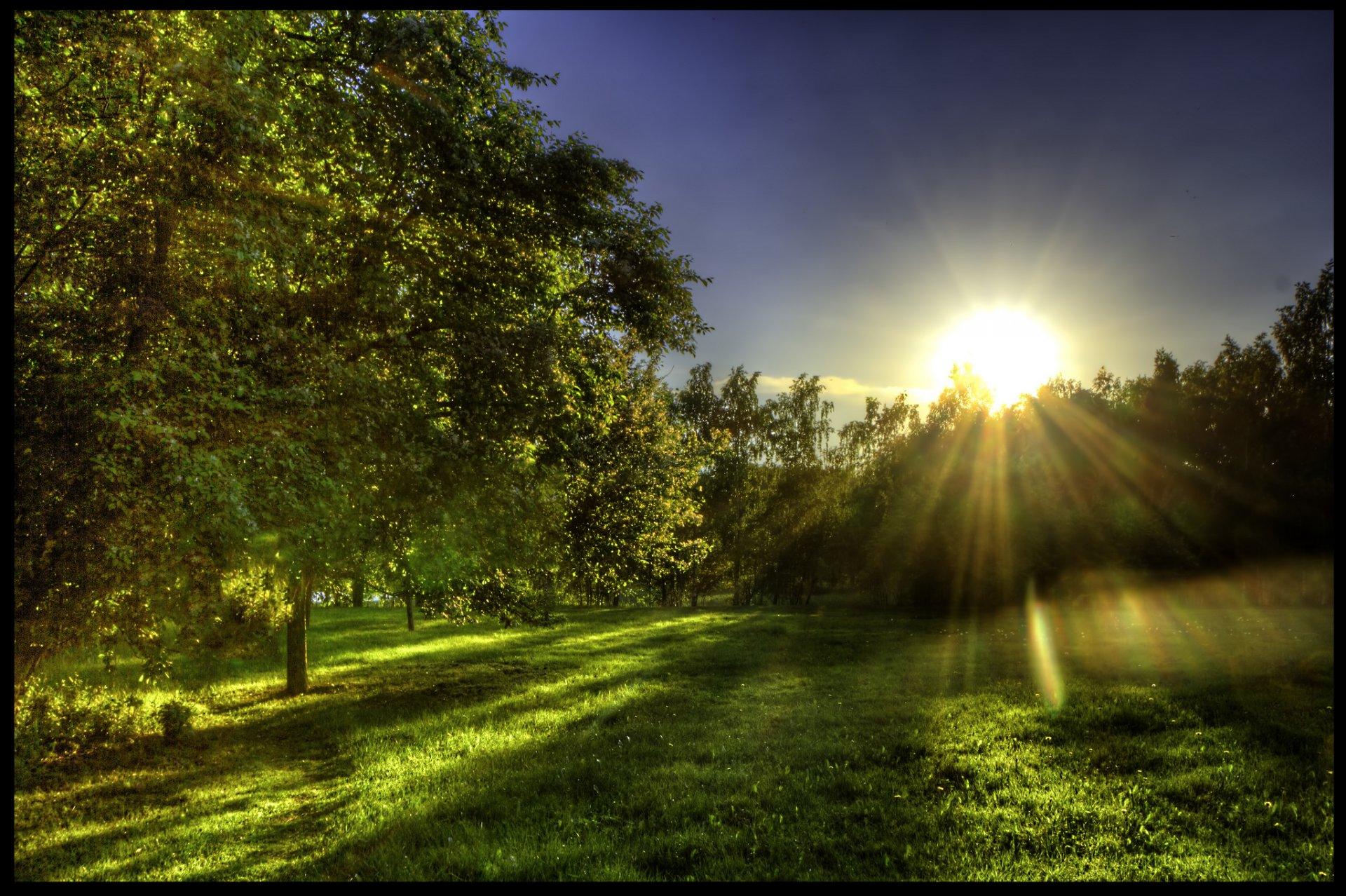 Свет и солнце картинки