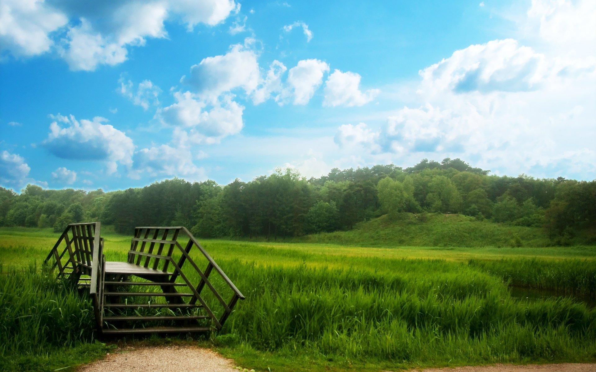 природа деревья трава река мост загрузить