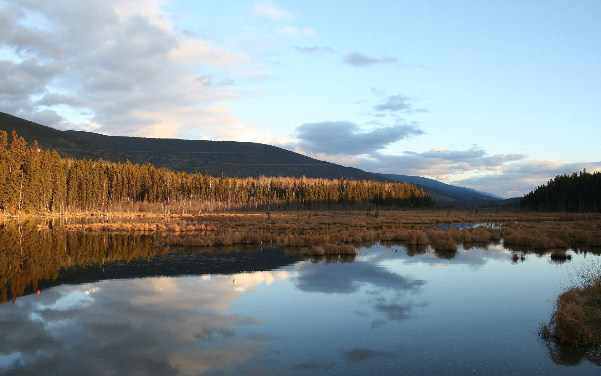болото горы бесплатно