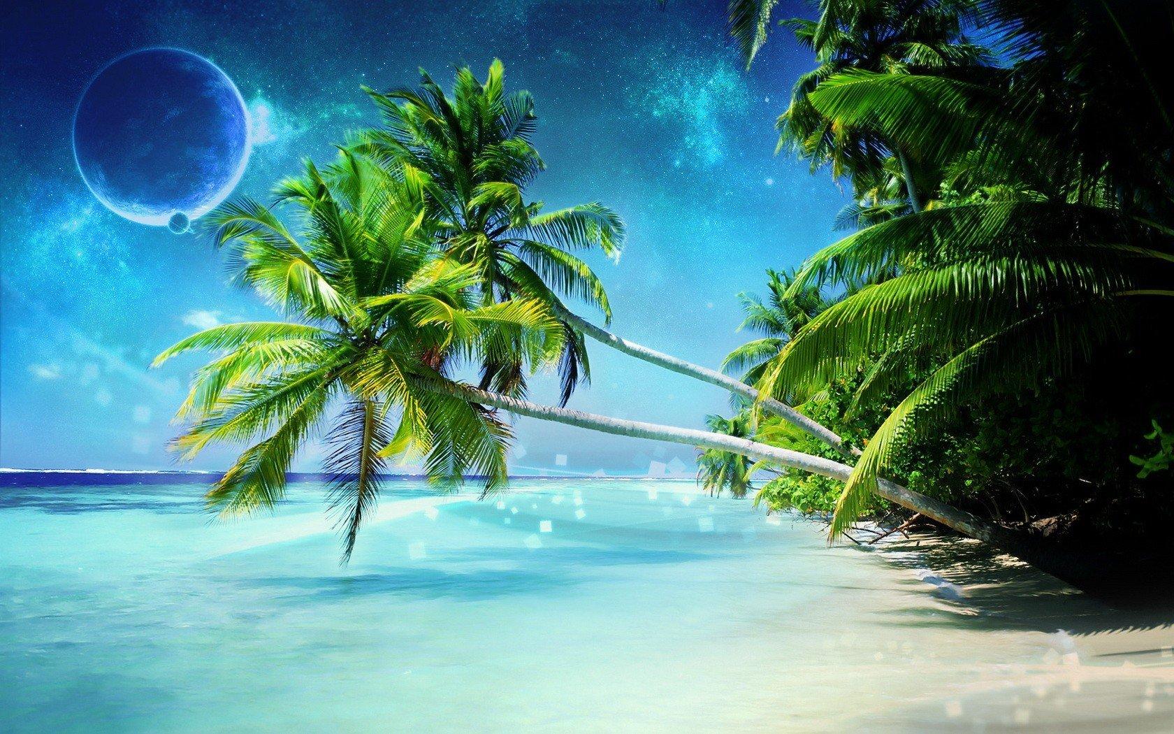 Море пальмы открытка, фото
