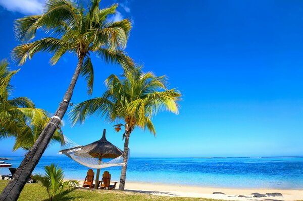 tropical paradise beach palms sea ocean sunshine summer vacation hammock пляж море пальмы тропики песок берег
