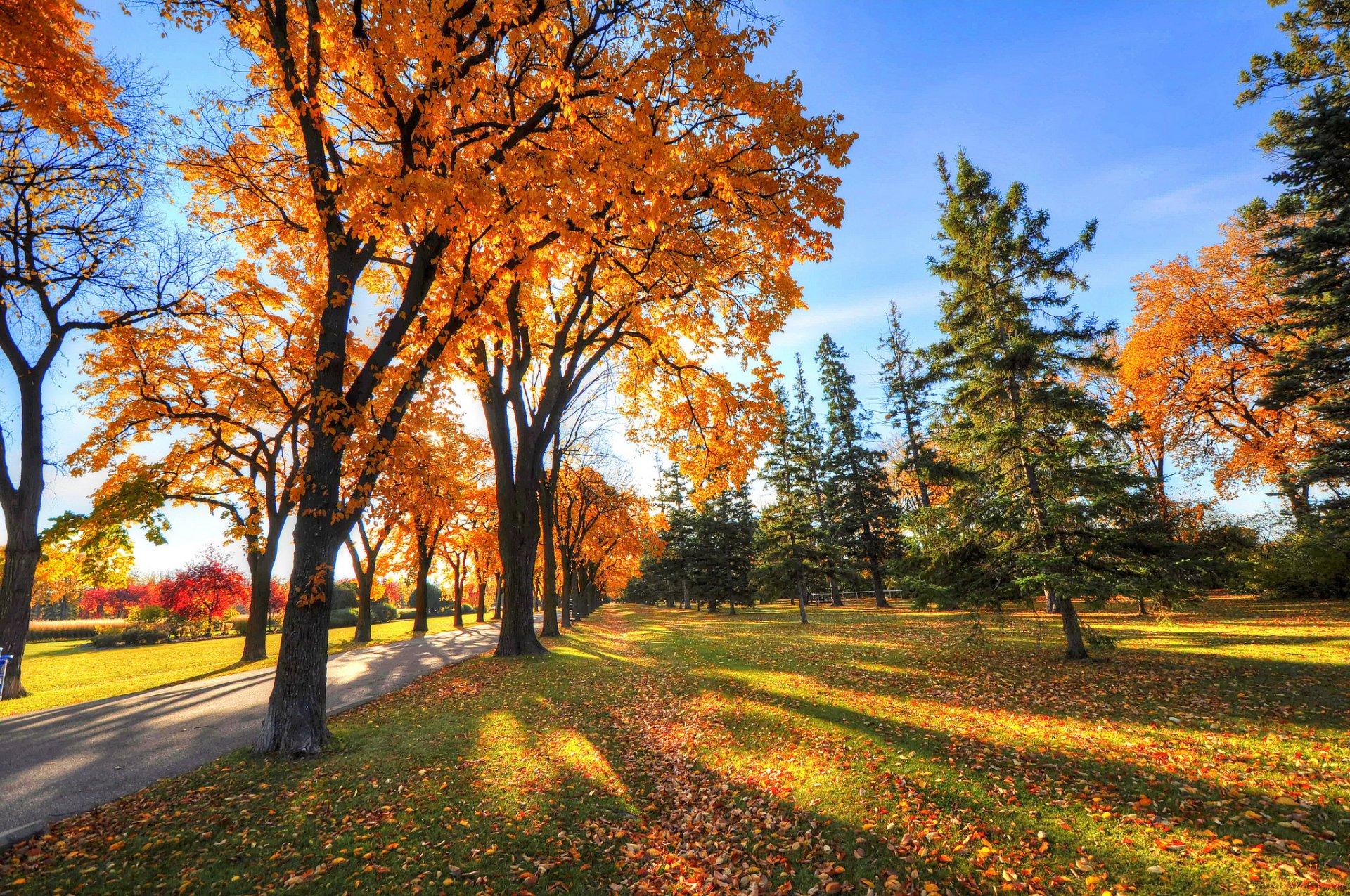 Красивые картинки осень все хорошо