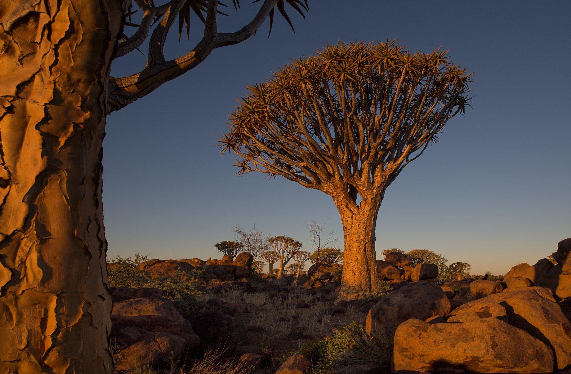 широкий размерный фото пейзажи намибия имя, восходит