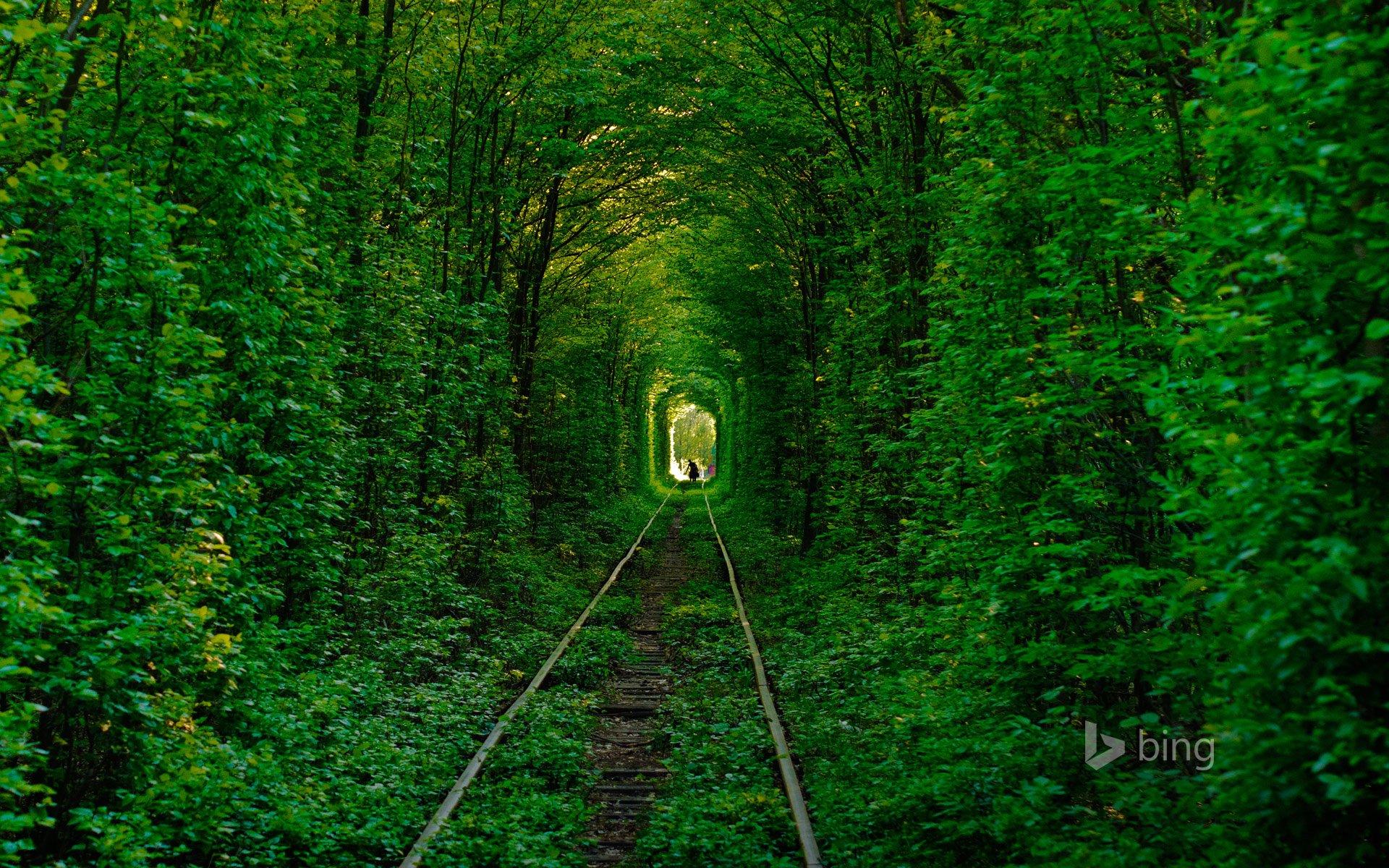 рельсы железная дорога деревья туннель  № 3118342 без смс
