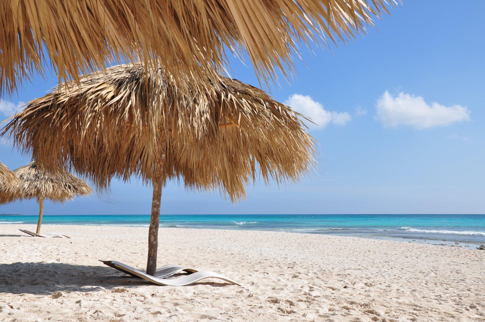 Картинки пальмы море и песок