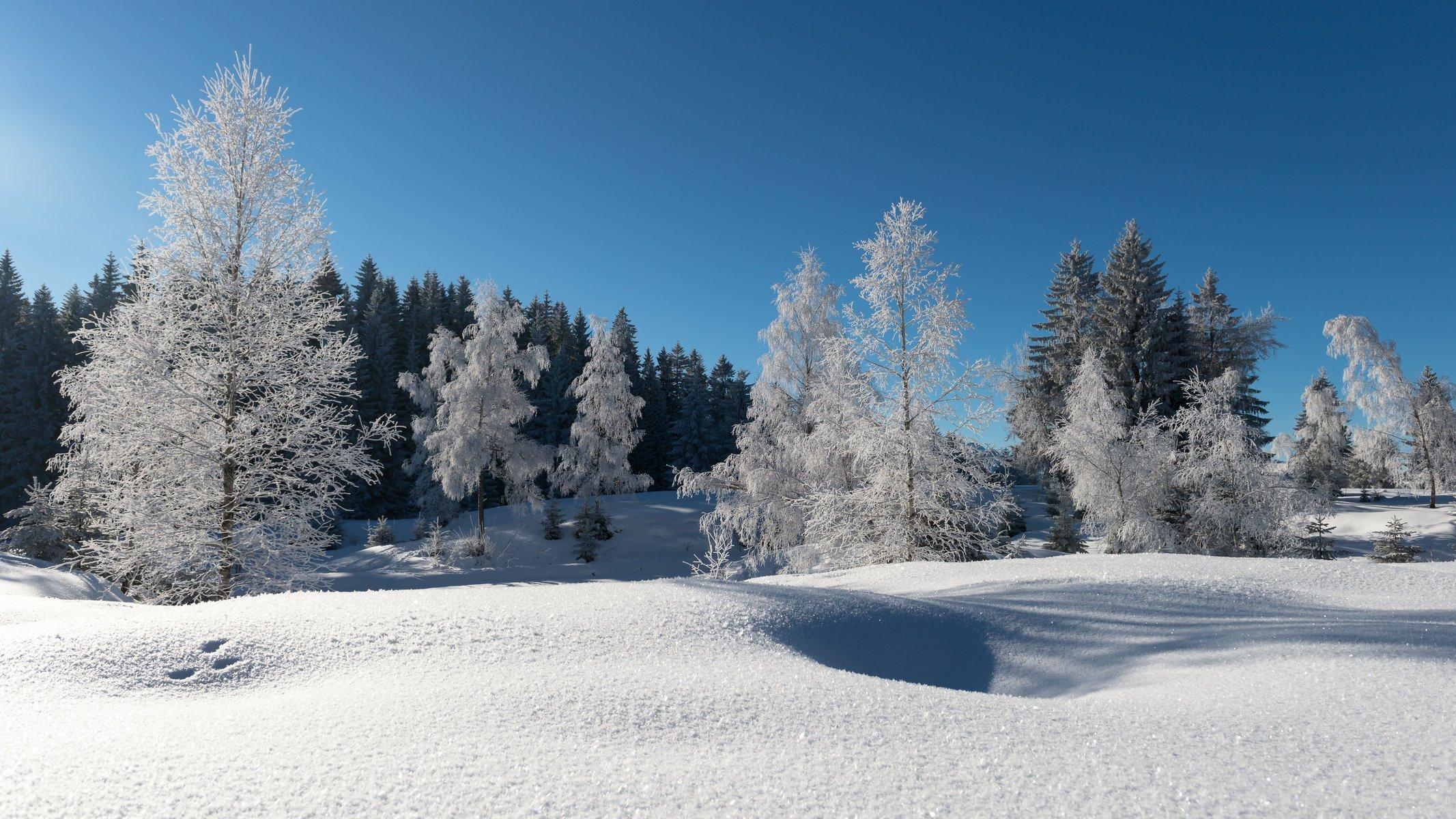 попрошаек картинки зима в высоком качестве на русском была весьма музыкальной