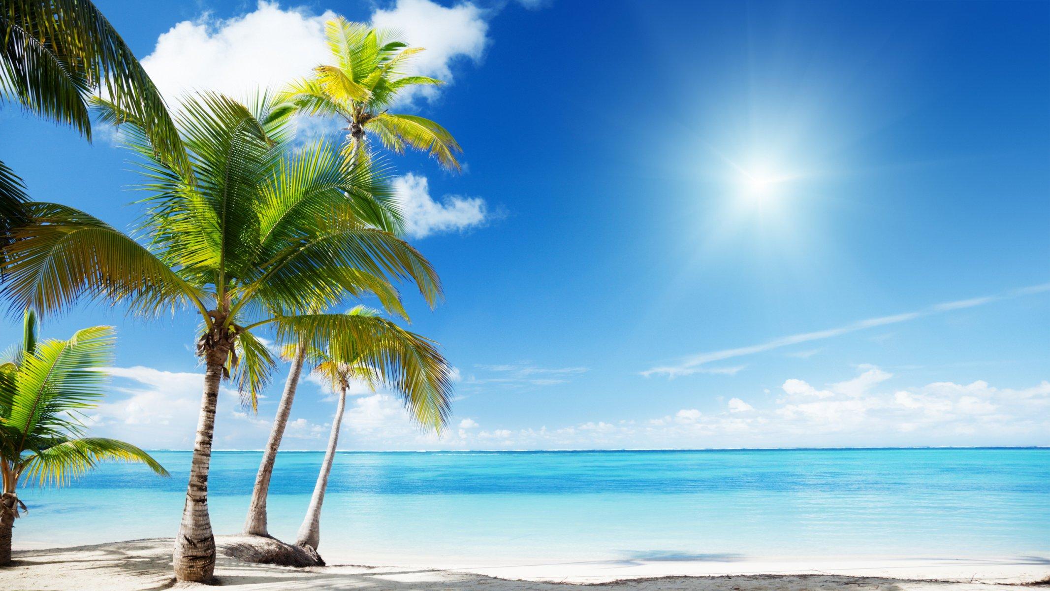 природа песок пляж дома море пальмы бесплатно