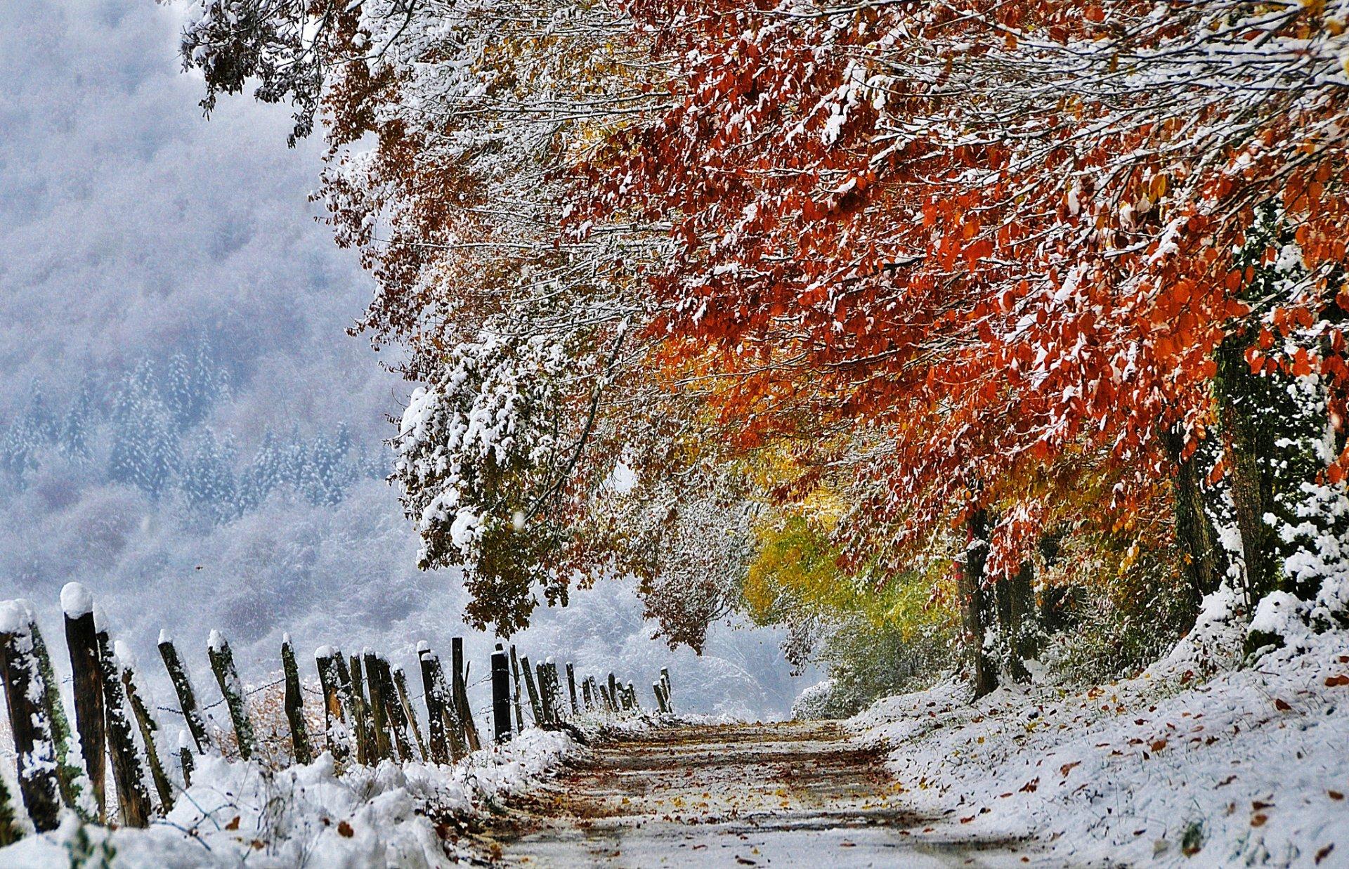 картинки на рабочий стол поздняя осень пейзажи