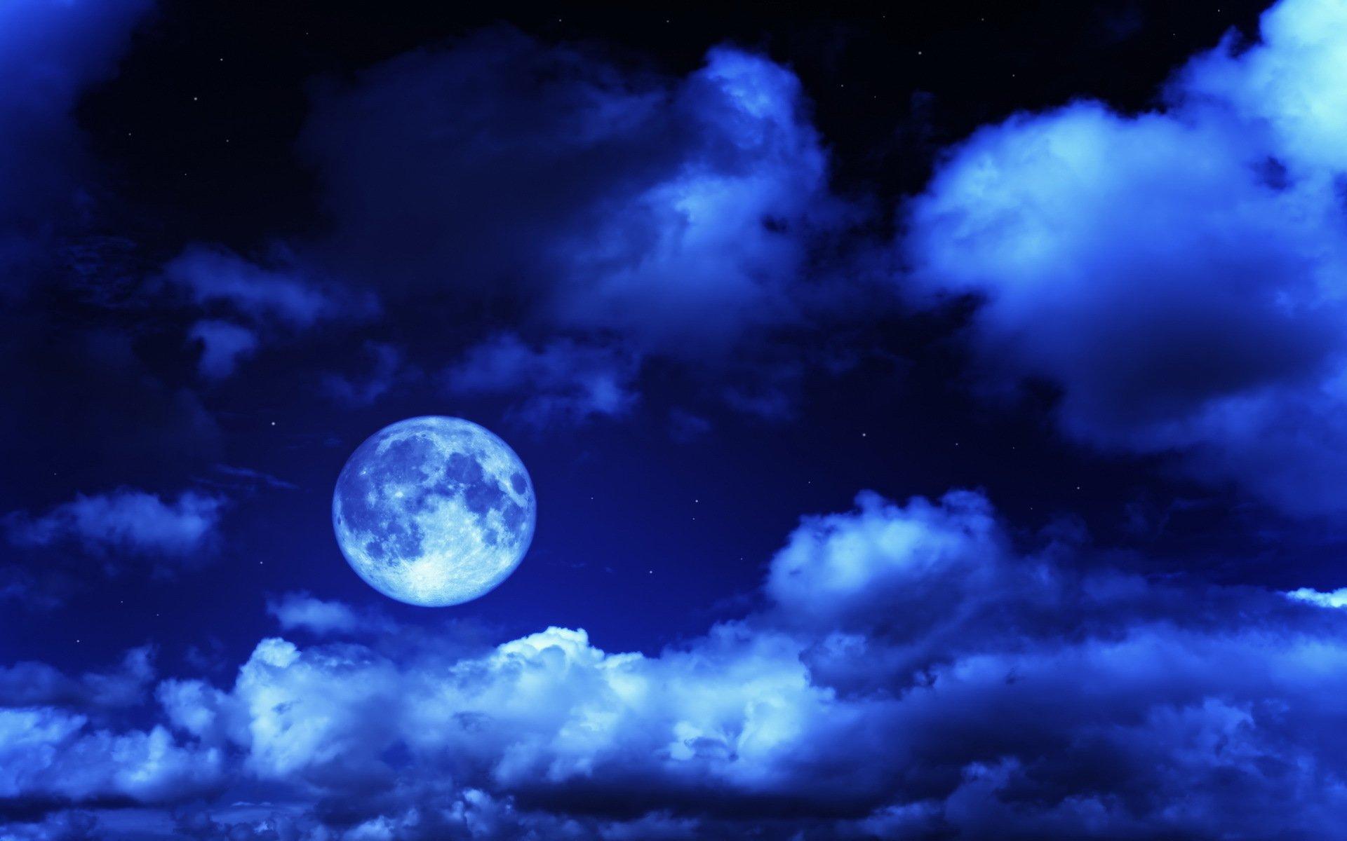 рыбой дарвином открытки ночное небо самой