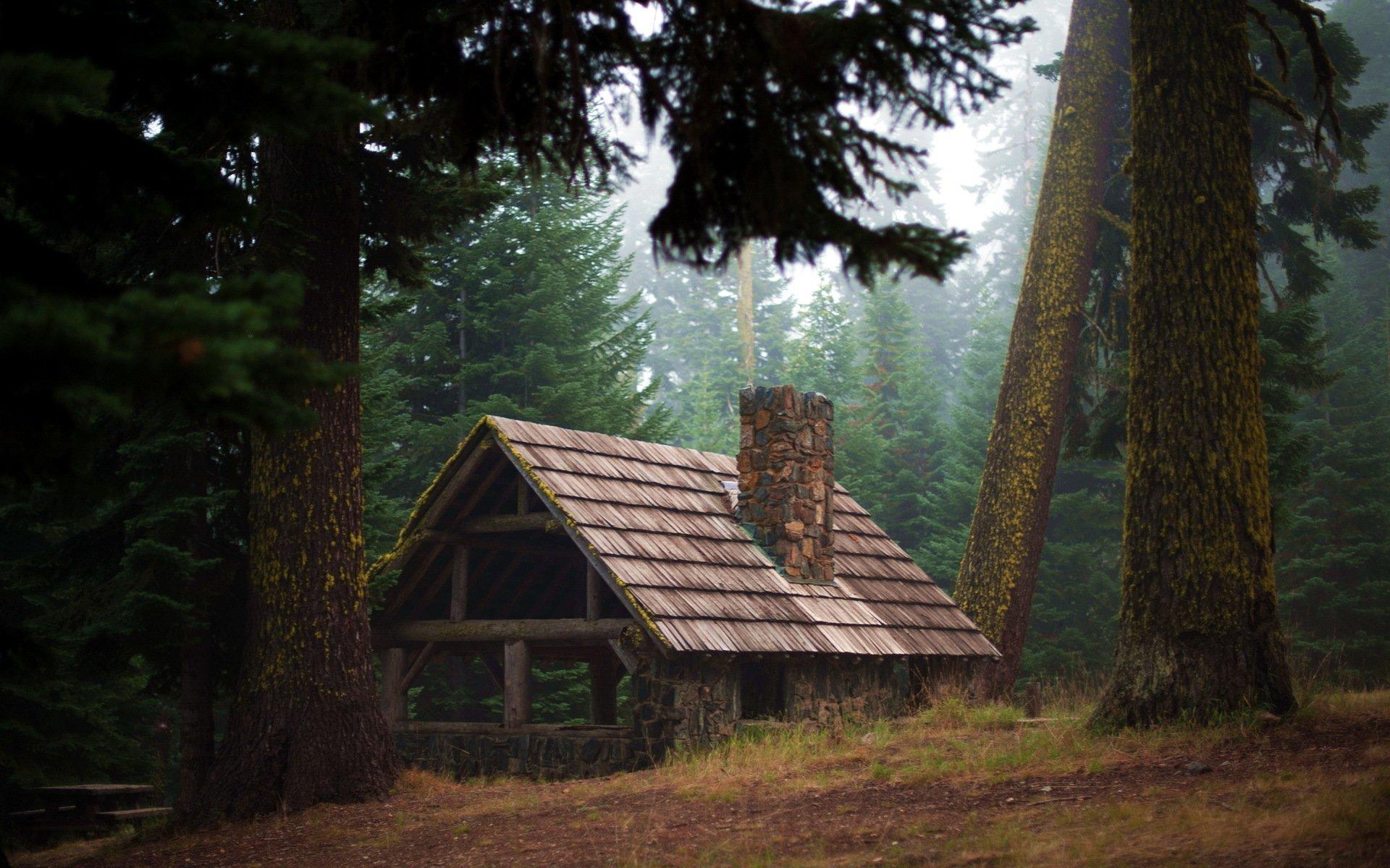 Домик на опушке леса бесплатно