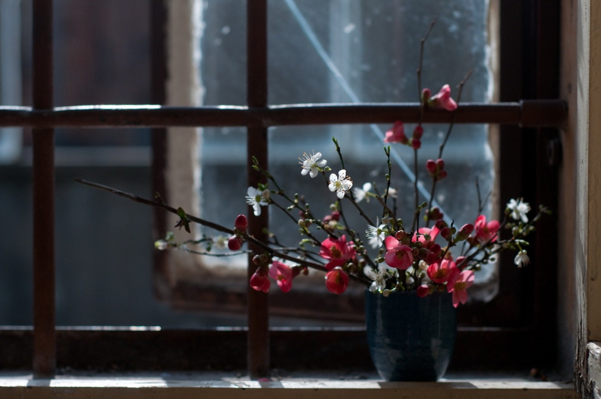 весна за окном загрузить