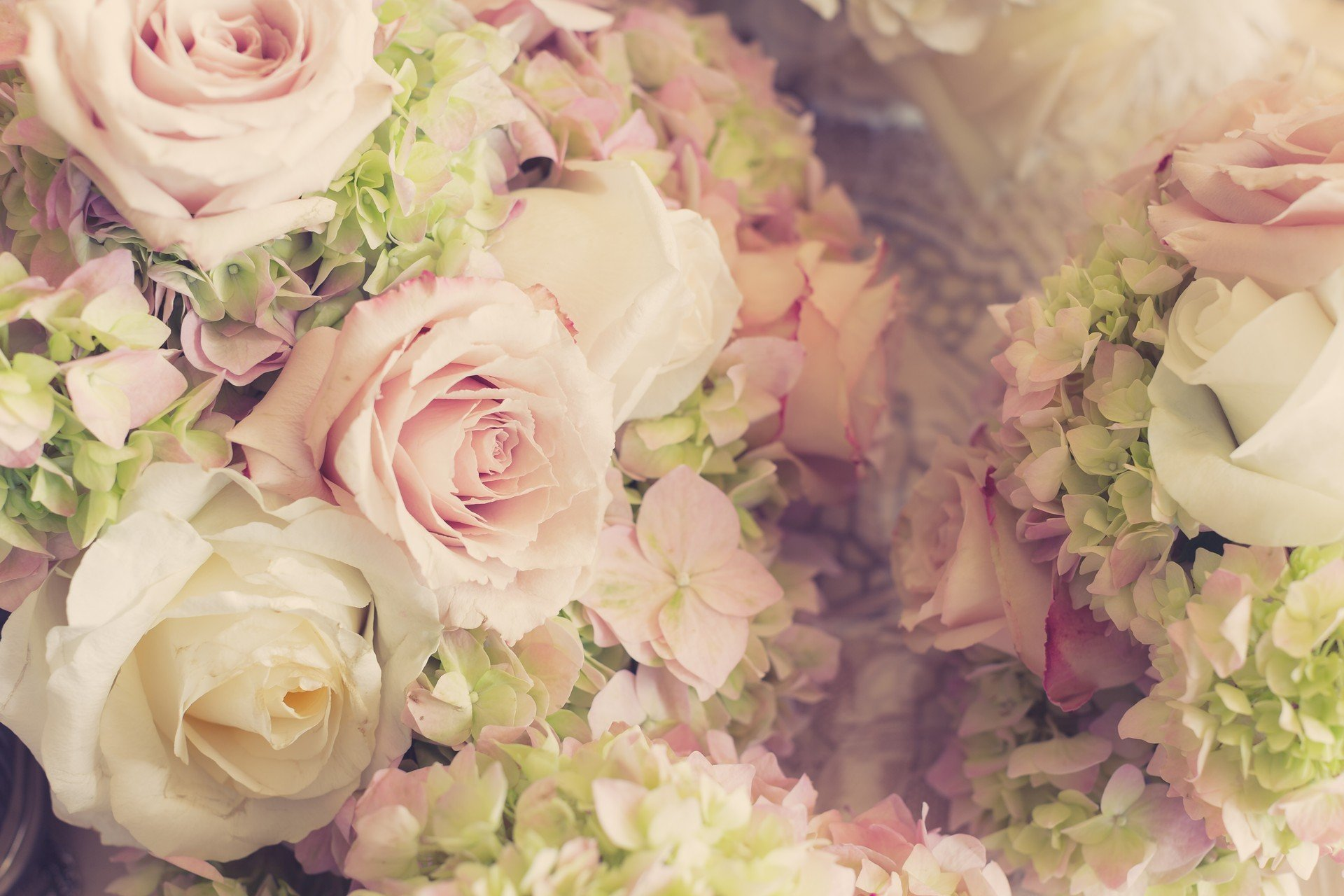 нежно-кремовые свадебные розы  № 1322983 загрузить