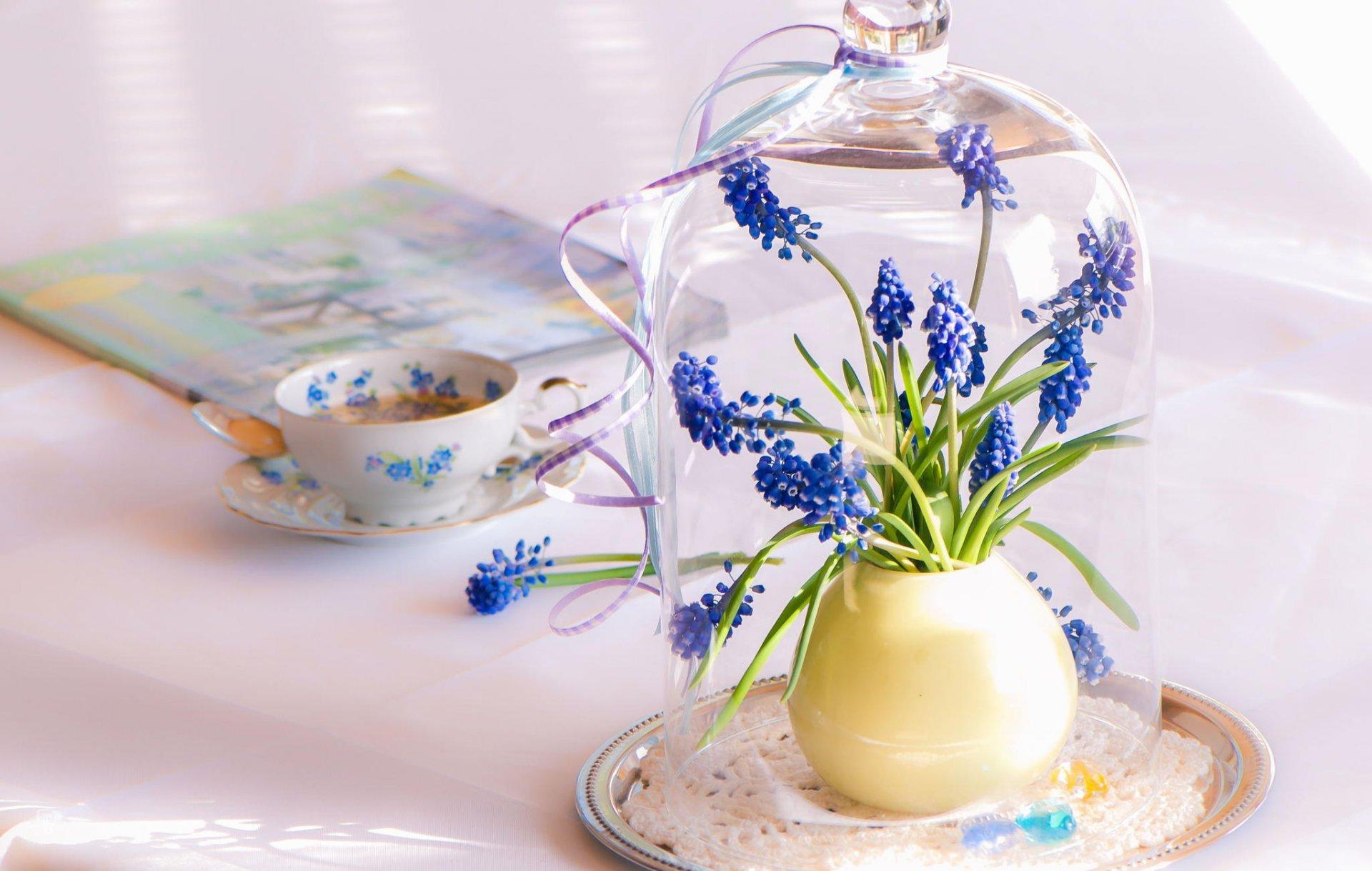 Обои стол, цветы, синие, серверовка. Цветы foto 6