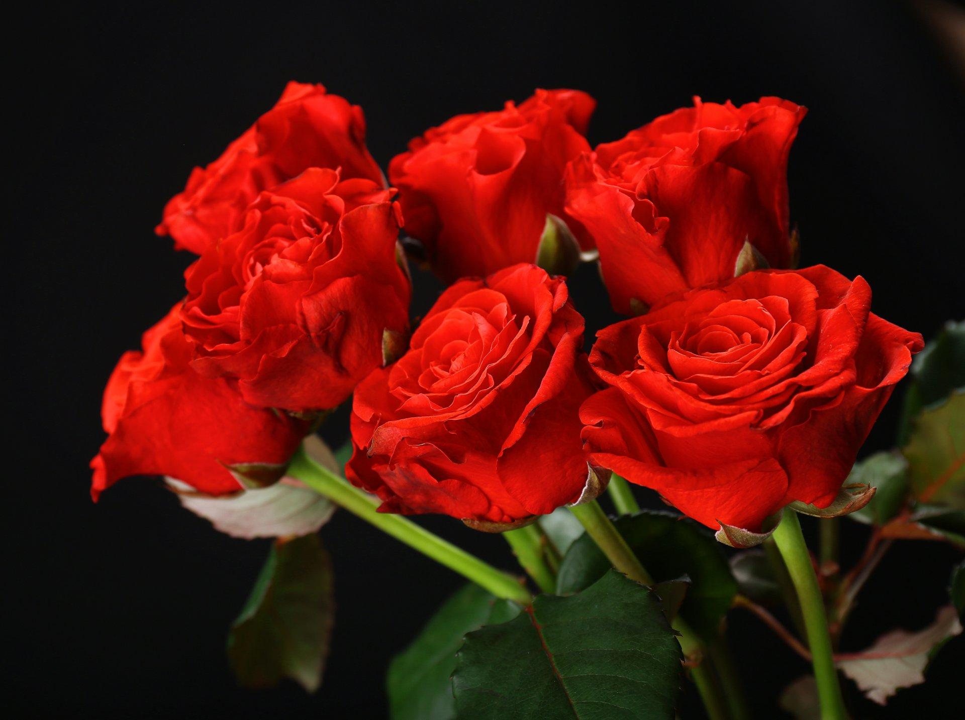 Муз открытка цветы, поздравление