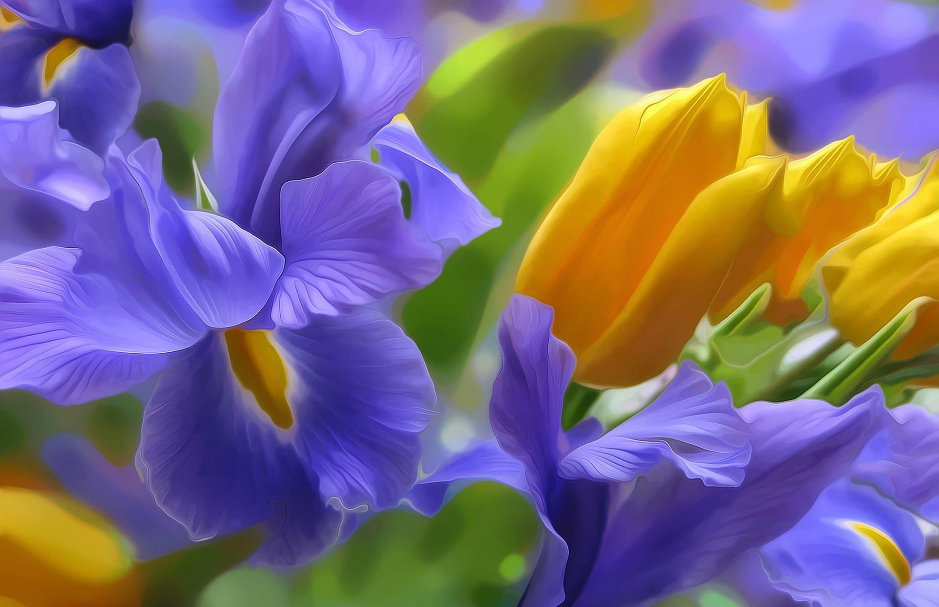 Работу, открытка с днем рождения с цветами ирис