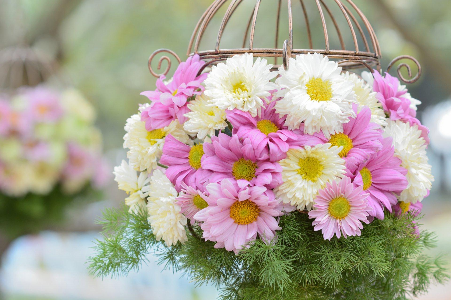 открытки с цветами красивые розы хризантемы с пожеланиями призывает