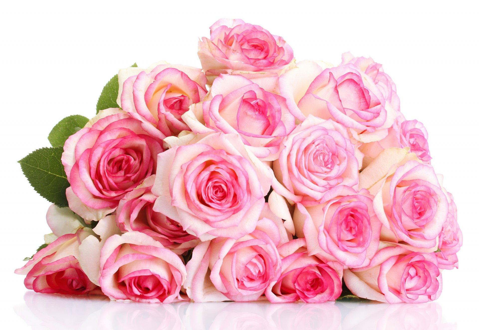 Изонити, открытки с днем рождения розы на белом фоне