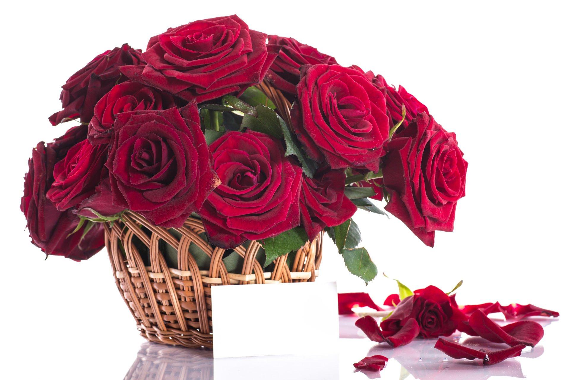 Шикарные открытки розы