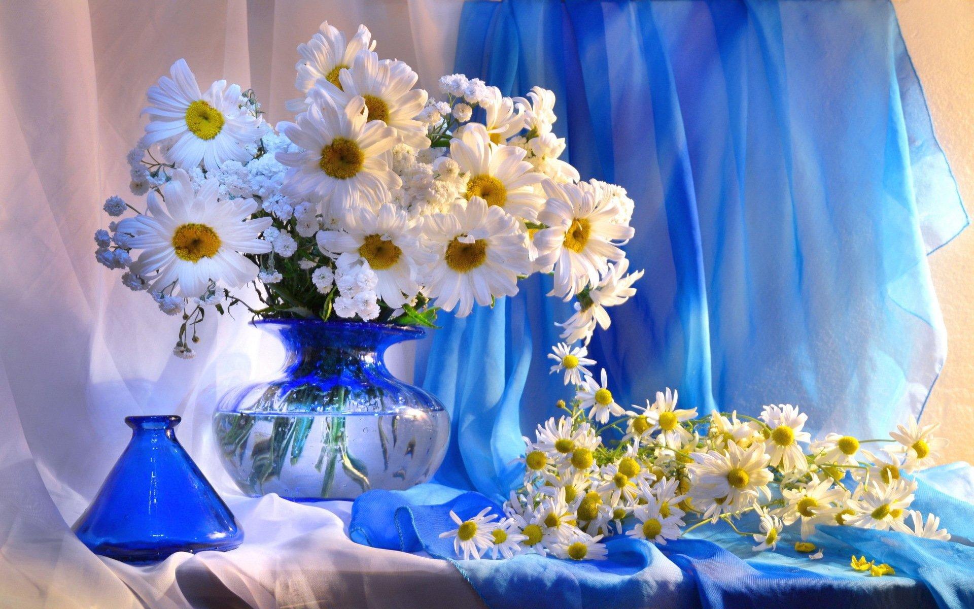Обои цветы, натюрморт. Разное foto 10