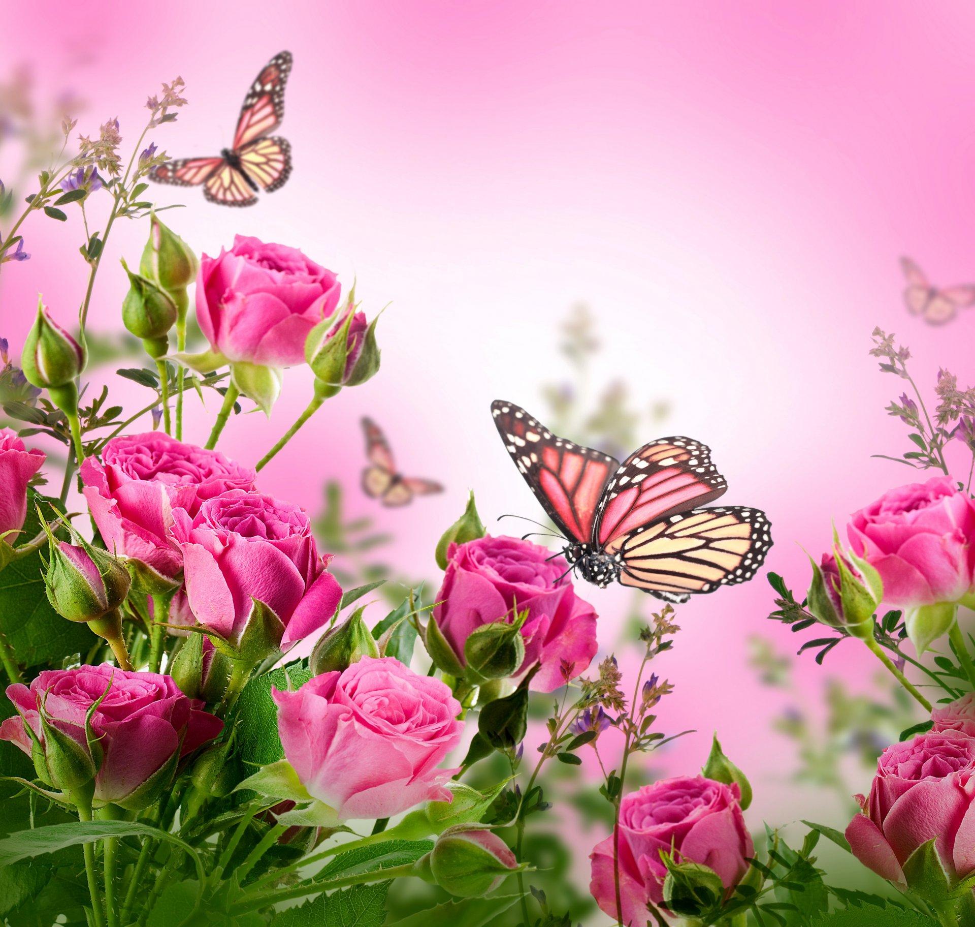Открытки с цветочками фото, открытки тюльпанами