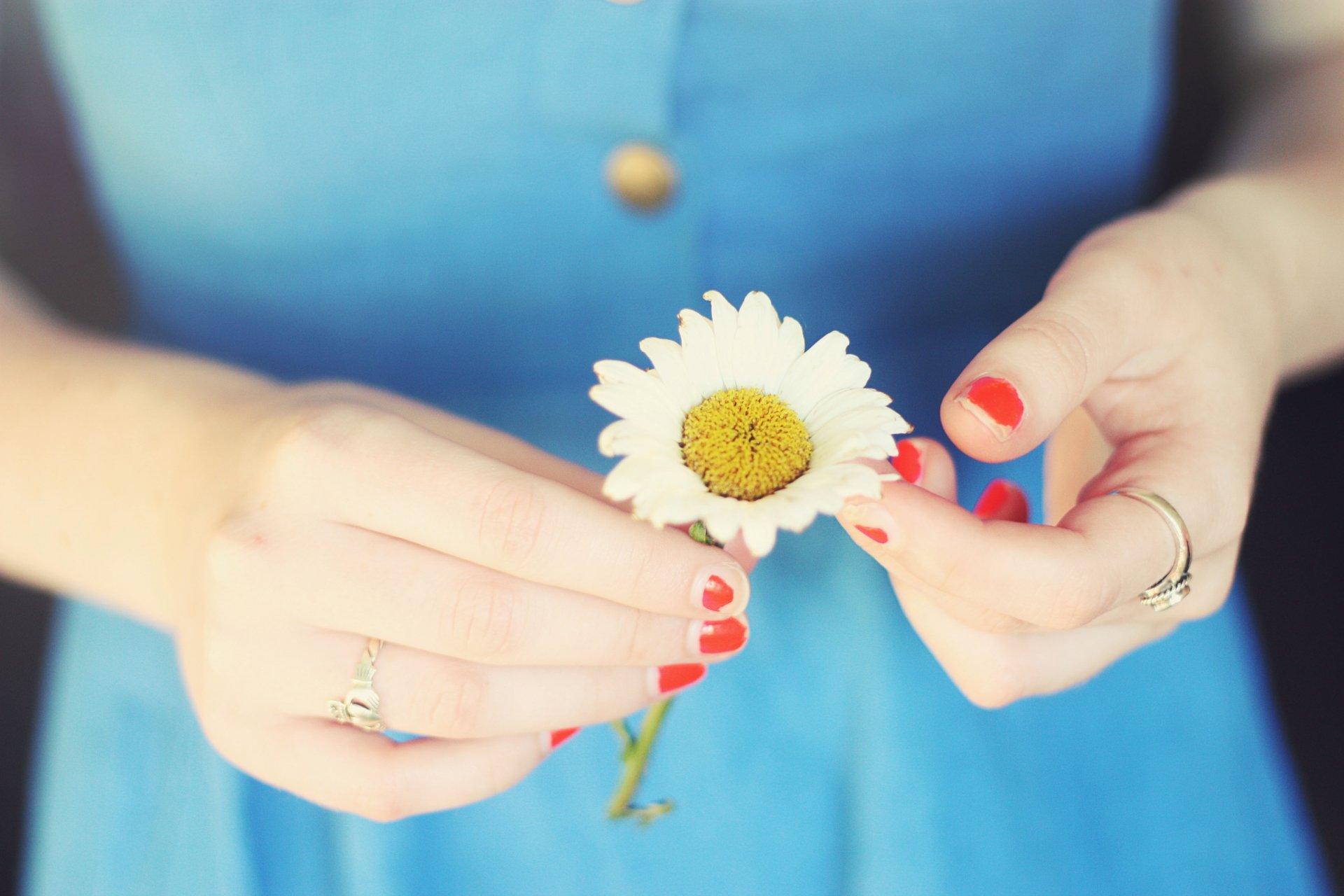 Женские руки с цветами фото