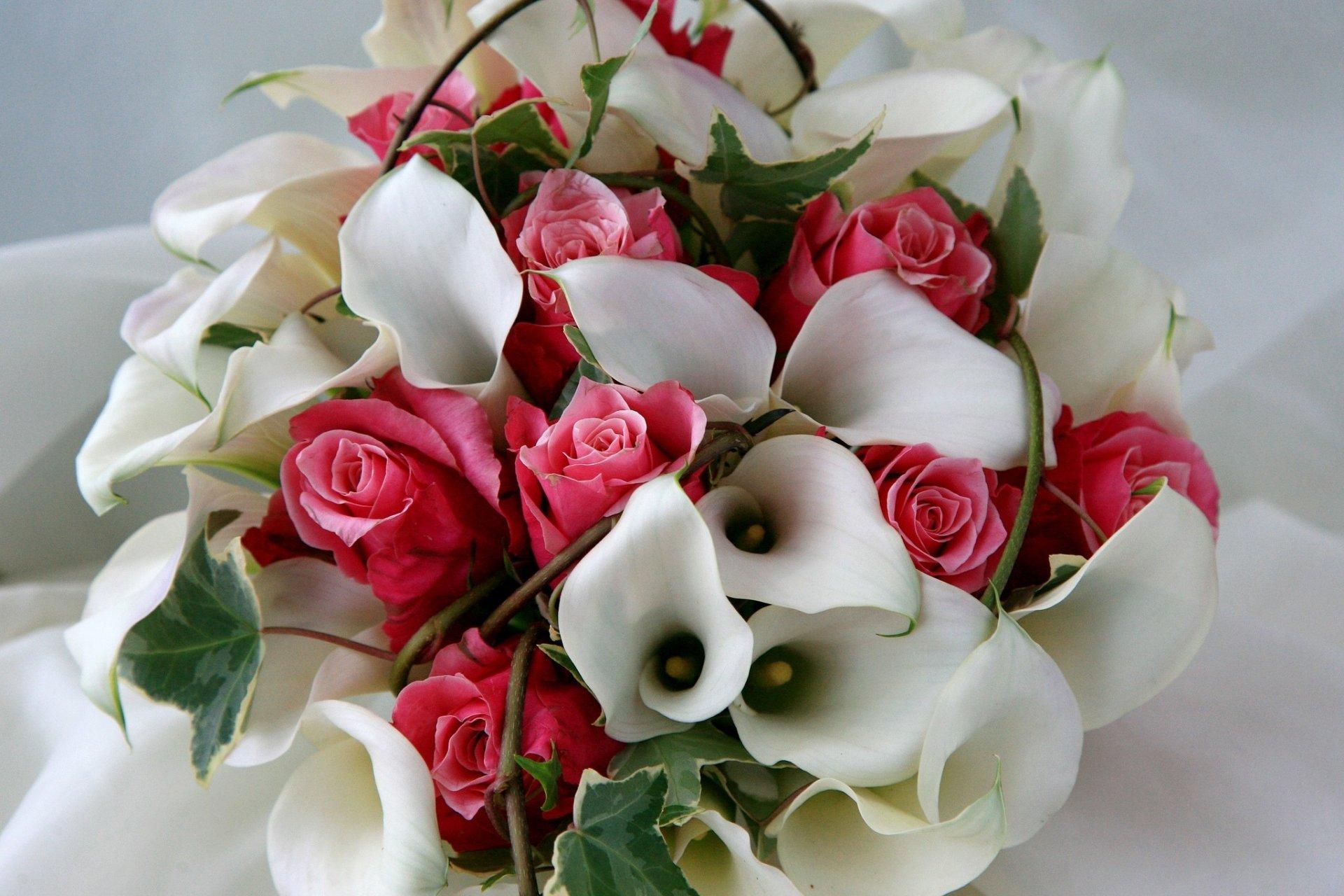 Открытка с днем рождения цветы каллы