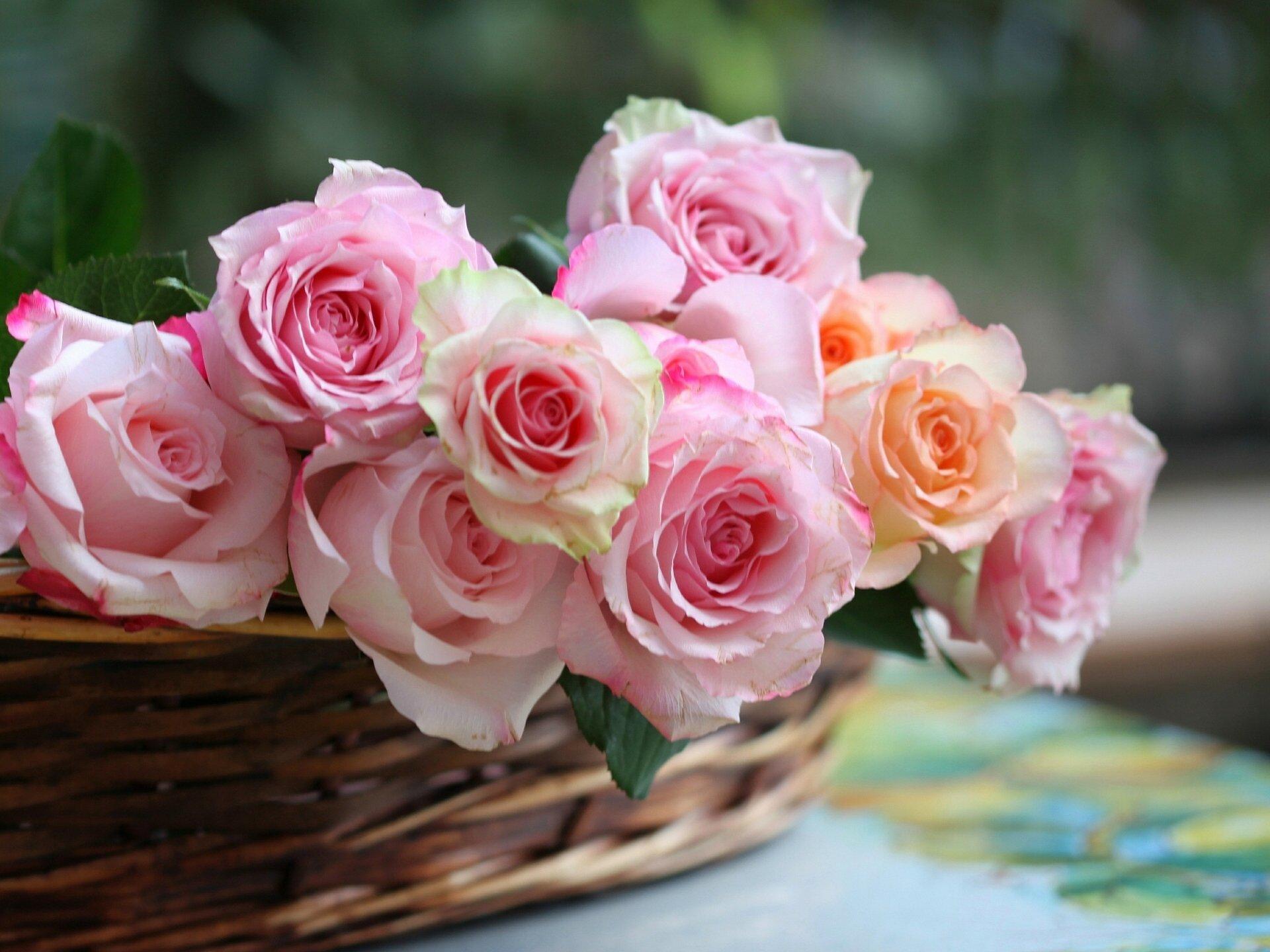 Днем рождения, картинки с розами нежные