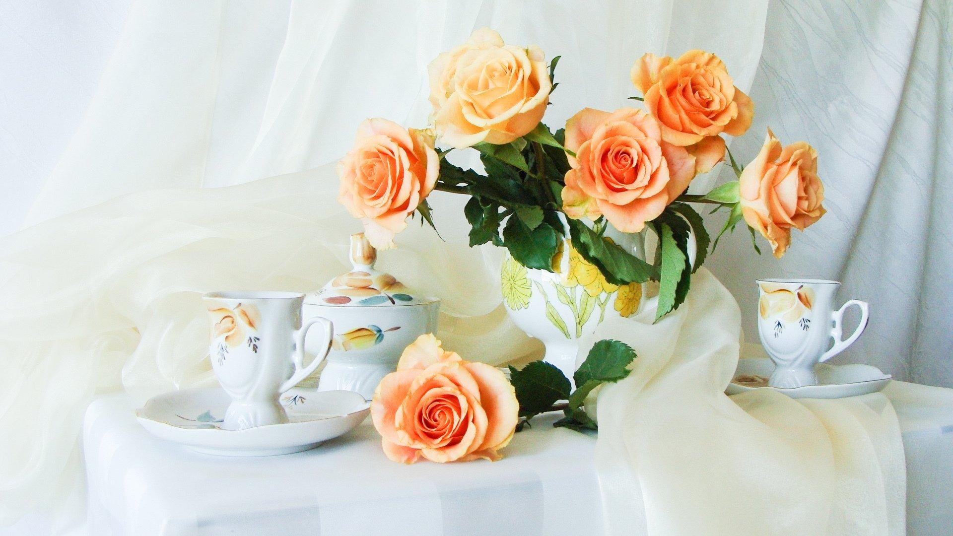 роза, желтая, чашка анонимно