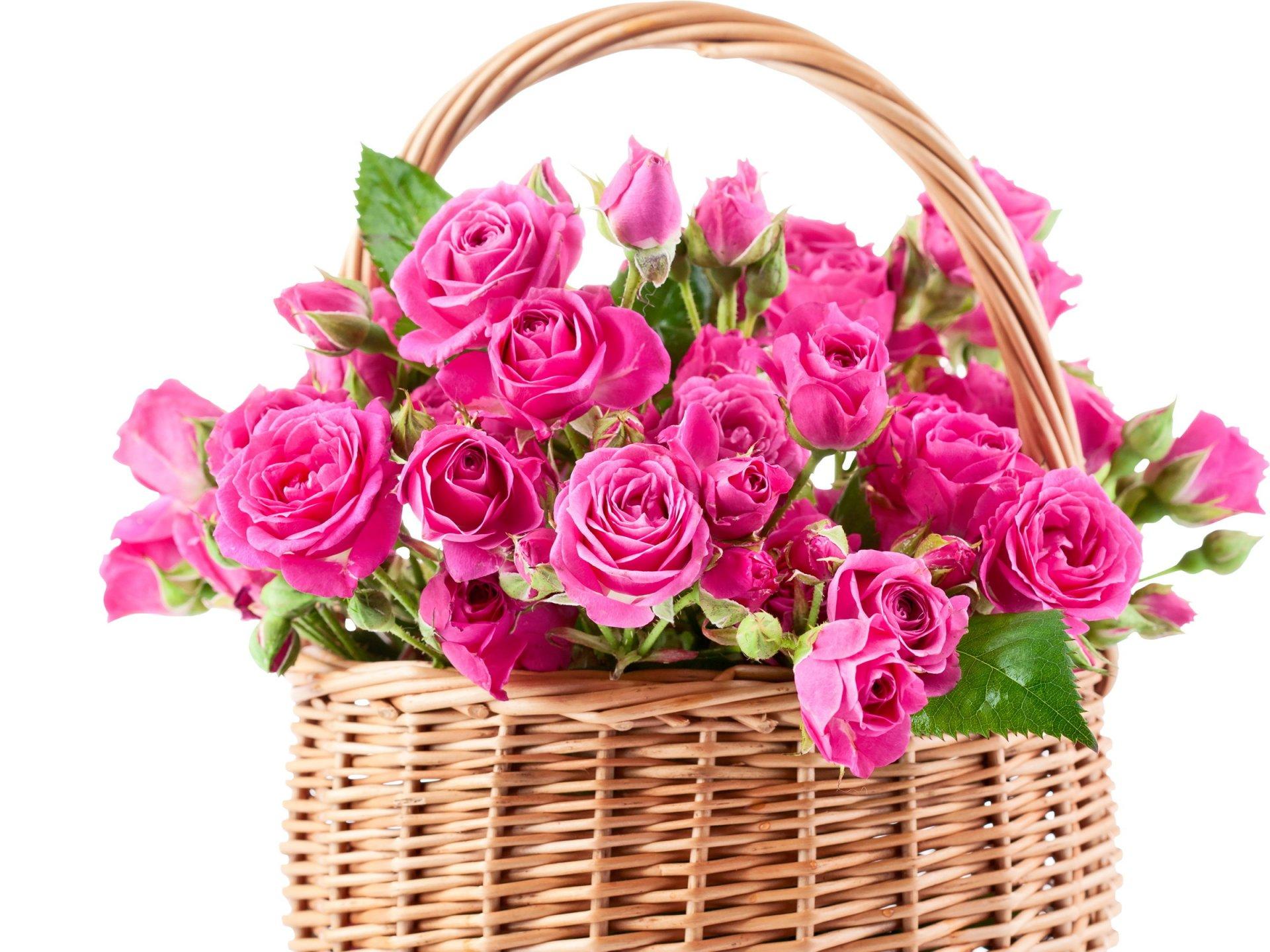 четырем картинки корзина цветов для тебя жизнь