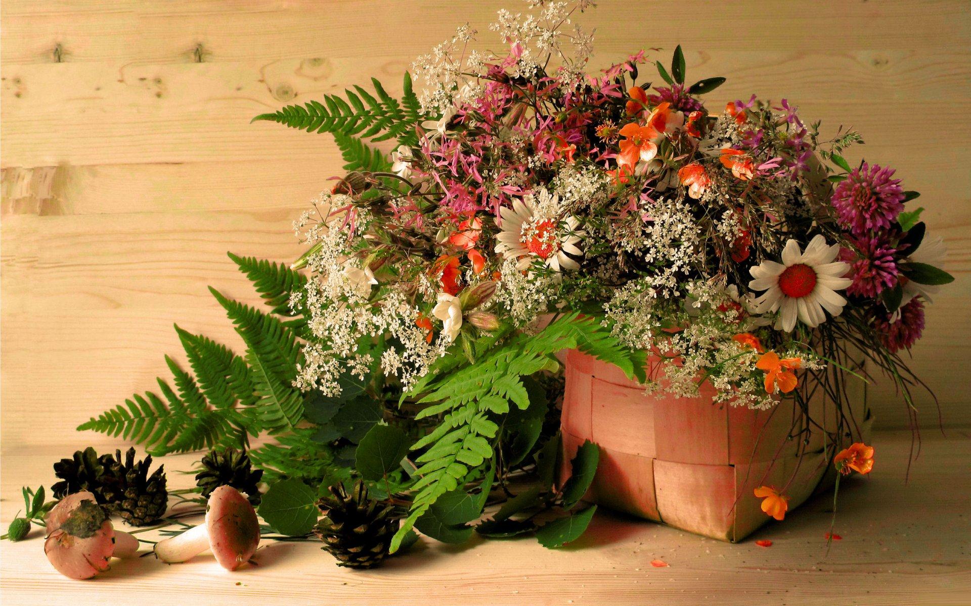 Обои Гриб, цветы. Разное foto 13