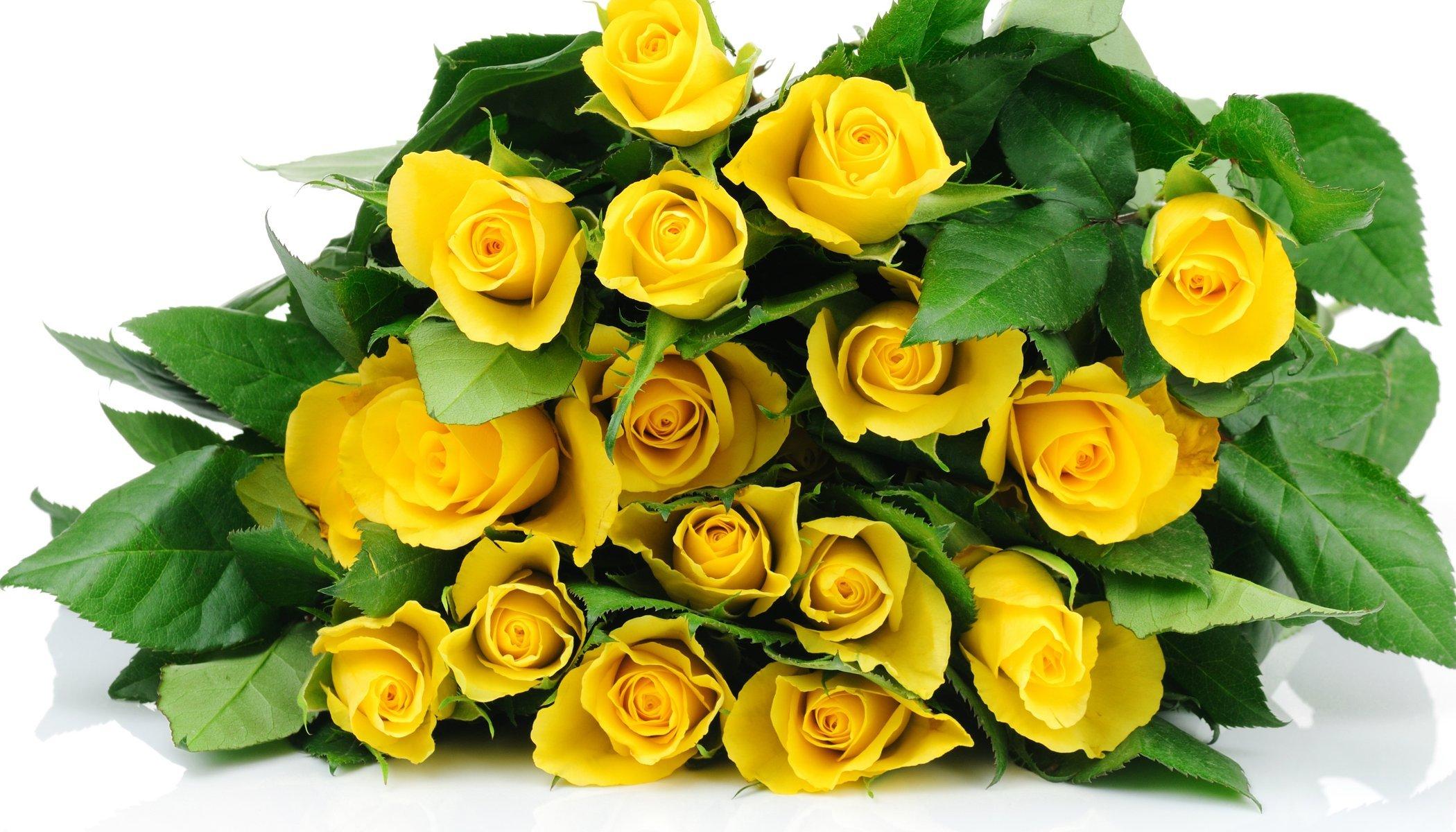 Что означают желтые цветы в подарок 11