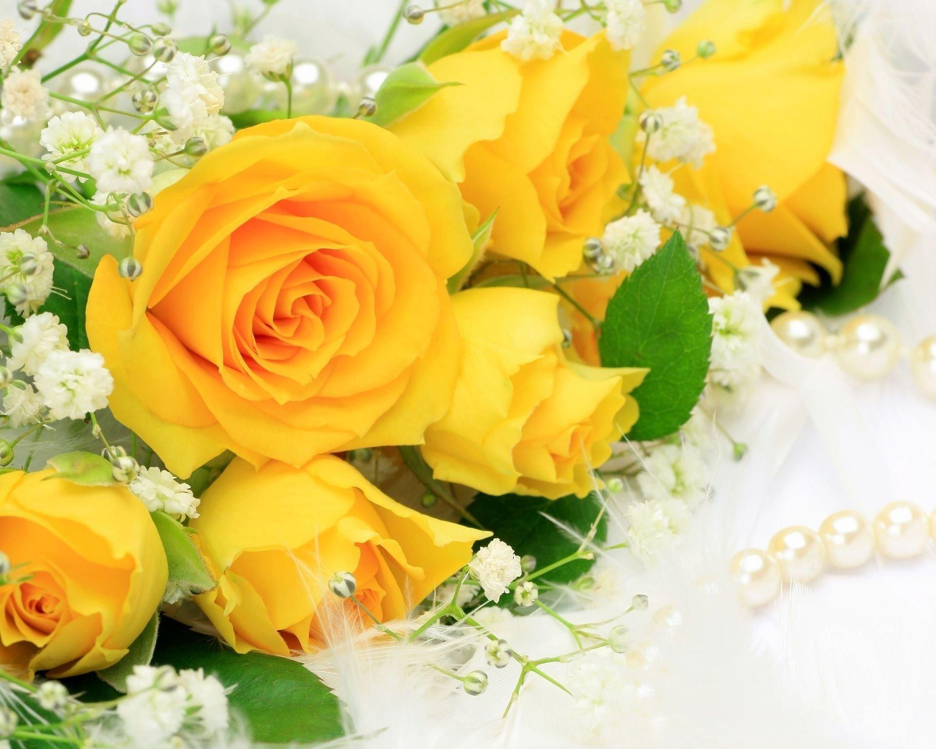 букет роз обои на рабочий стол в высоком качестве № 178041 загрузить