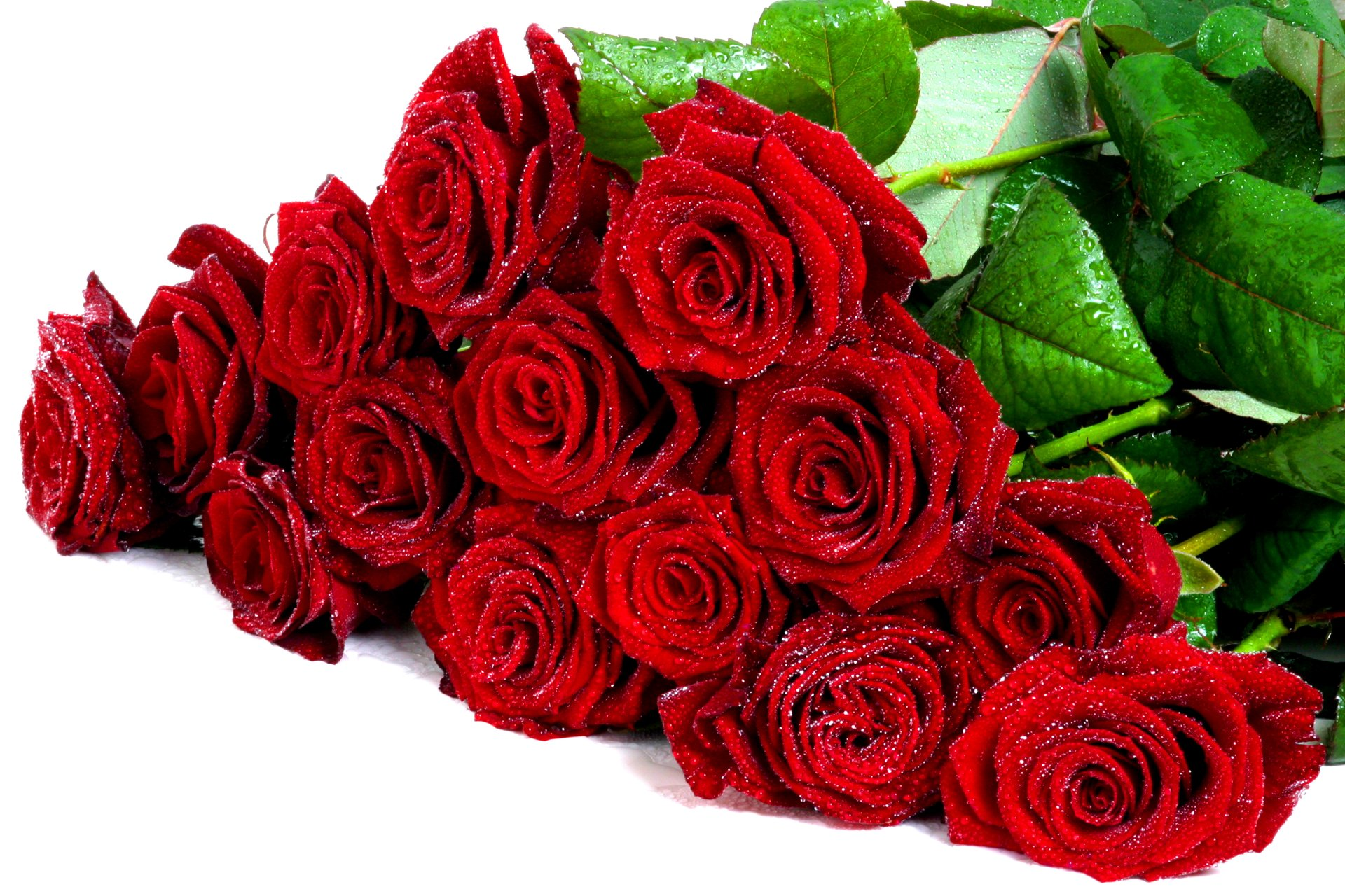 Поздравительные открытки букетов роз